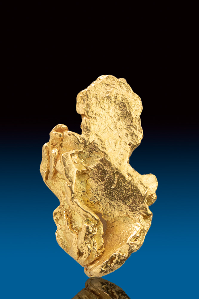 Shiny Alaskan Gold Nugget Leaf
