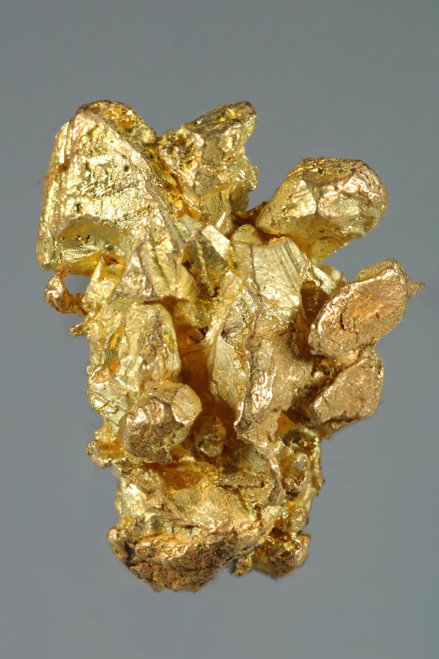 Well Defined Yukon Gold Crystal - Very Rare Find