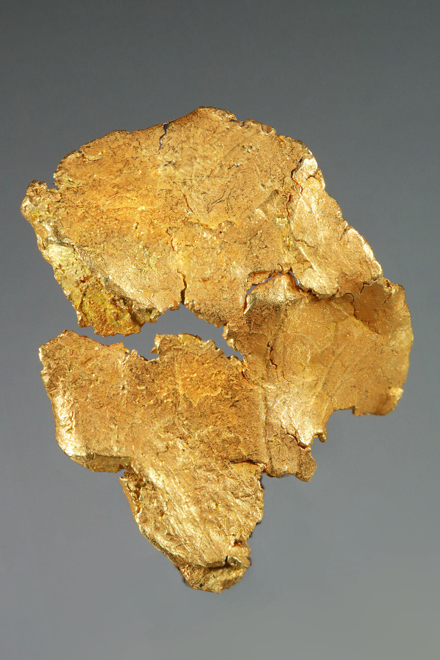 Intricate Leaf Gold Specimen from the Yukon