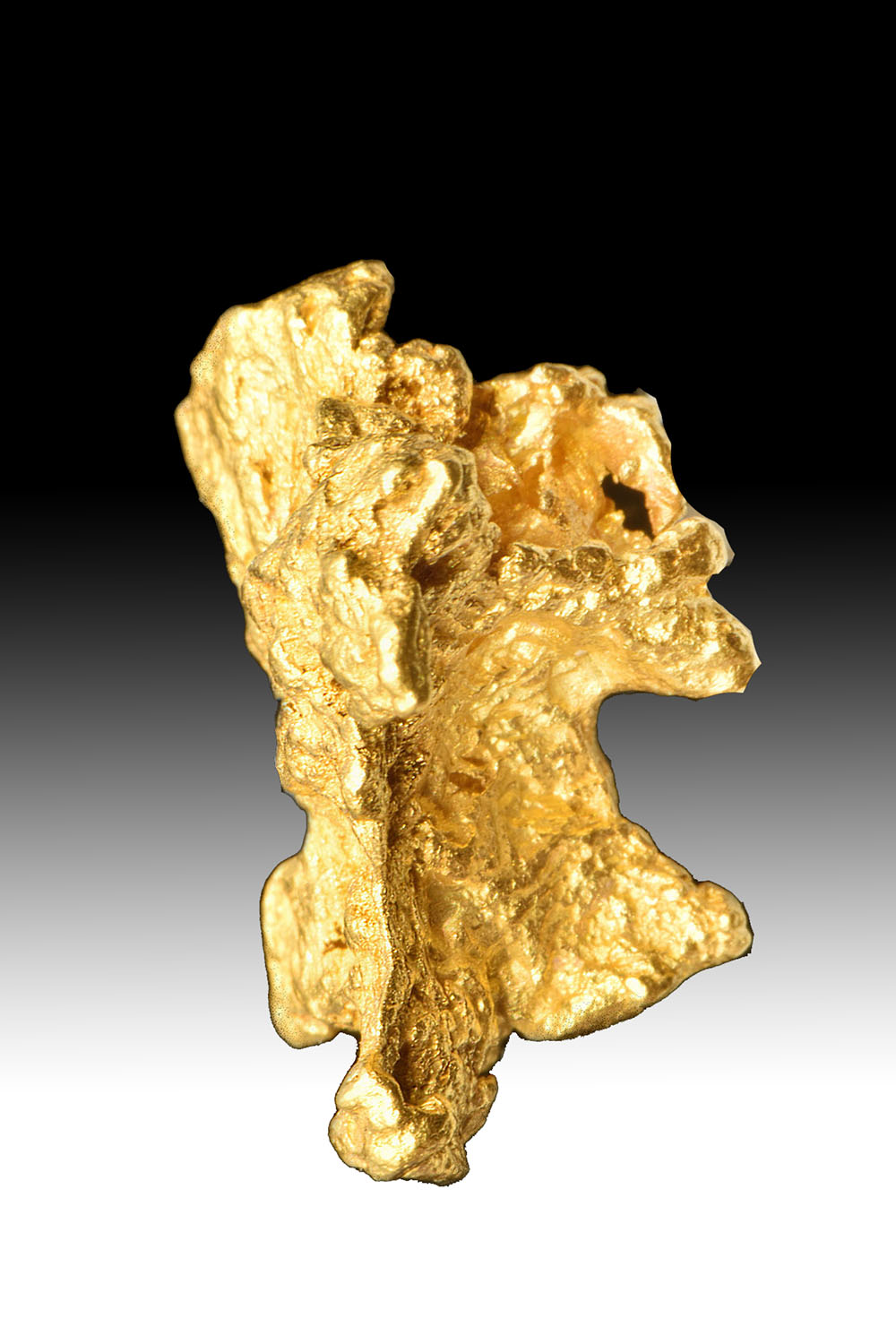 """Turtle"" Shaped Australian Gold Nugget - High Purity"