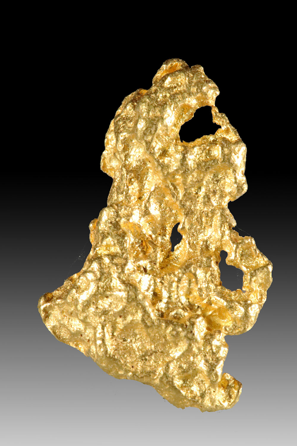 Delightful and Detailed Precious And Natural Gold Nugget