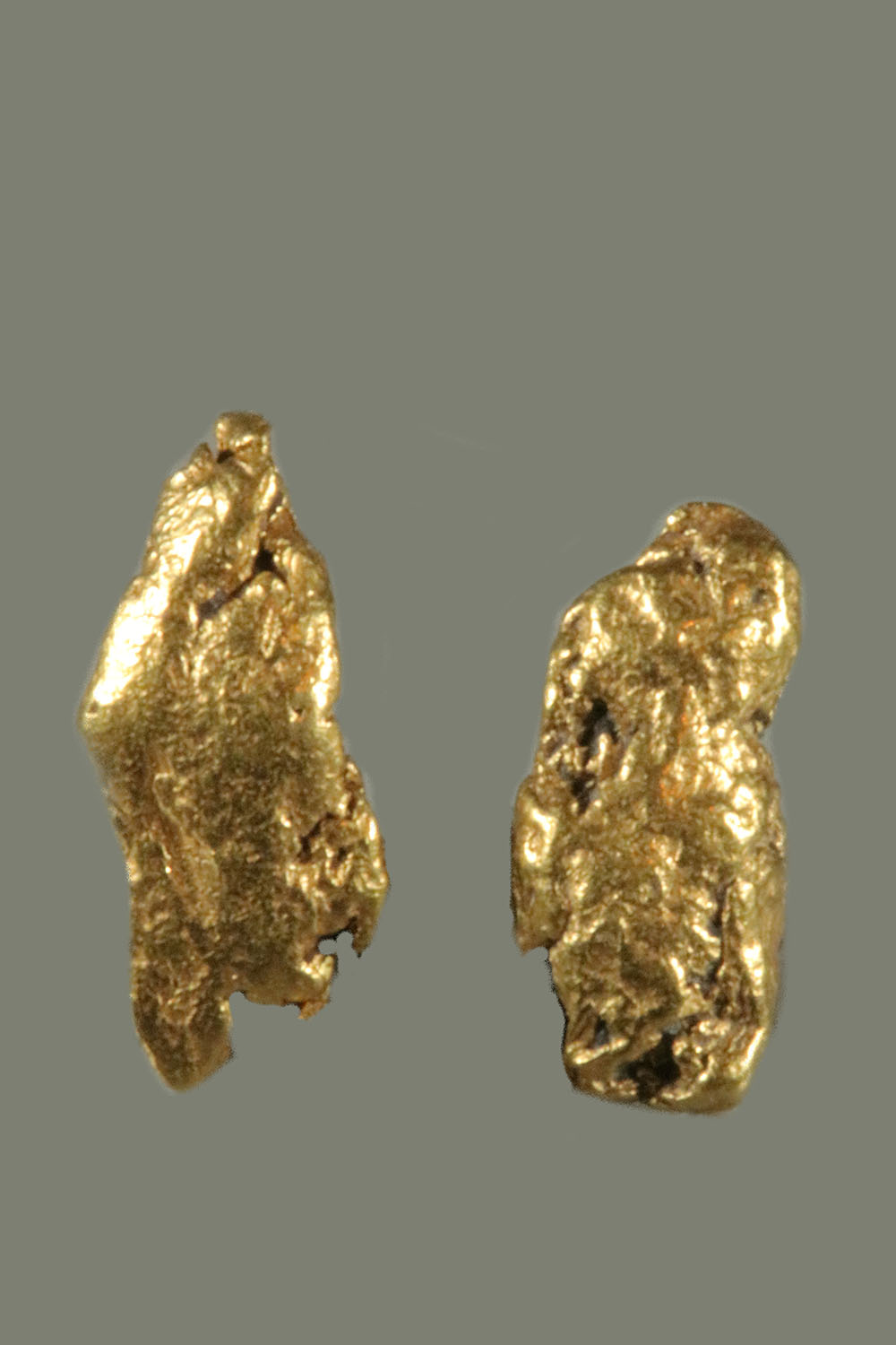 A Great Pair of Gold Nuggets from the Bering Sea