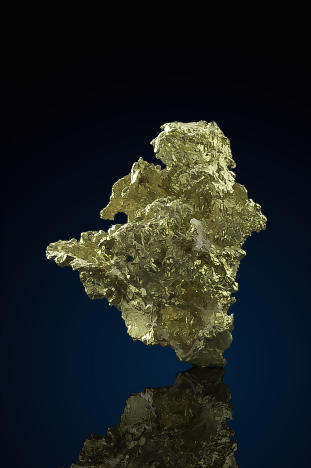 Dense and Intricate Crystalline Gold - Allegheny California