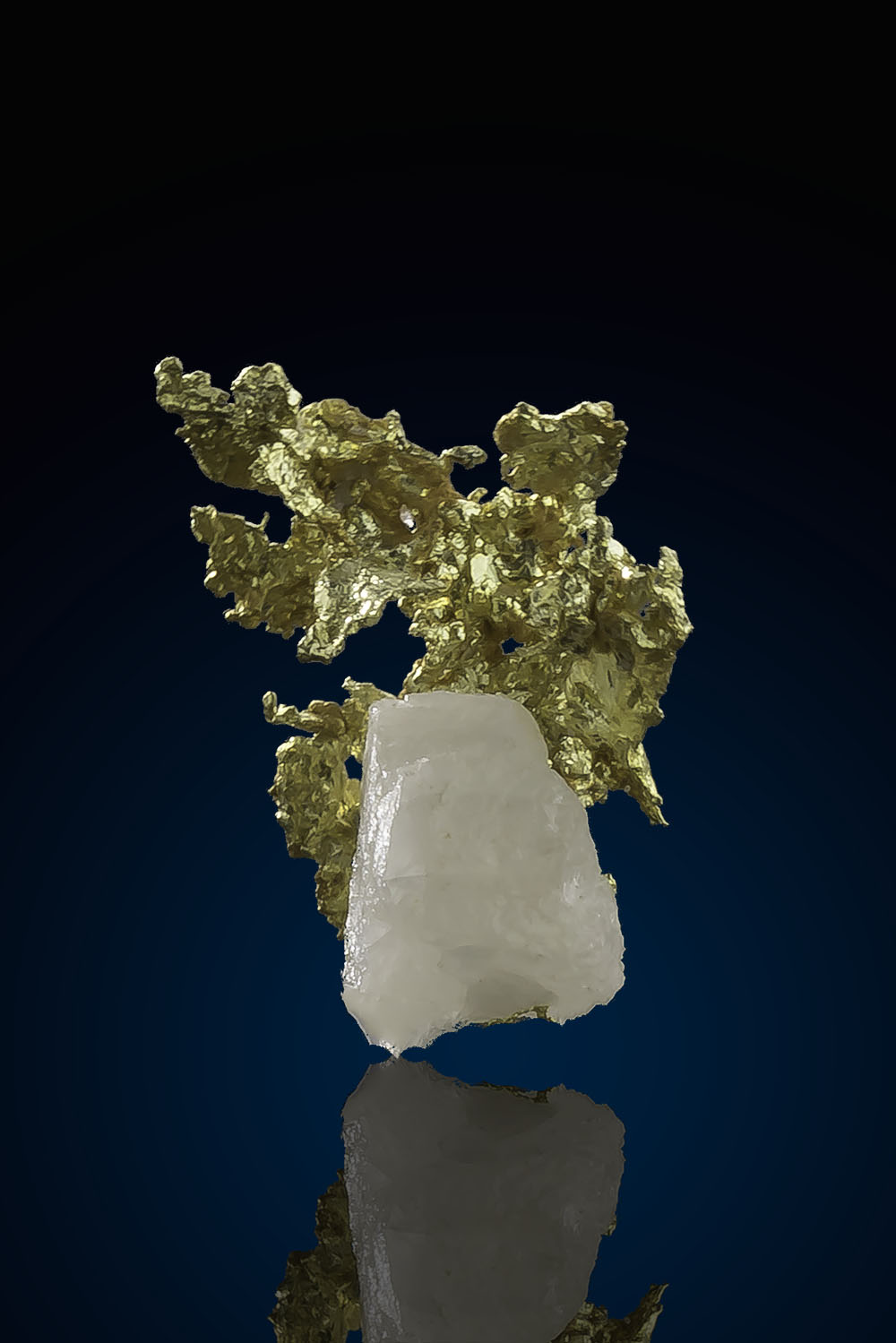 Beautiful Gold in Quartz - Allegheny Mining District