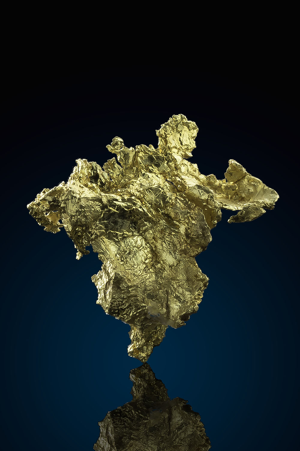 Allegheny Gold District - Intricate Crystalline Gold Specimen - Click Image to Close