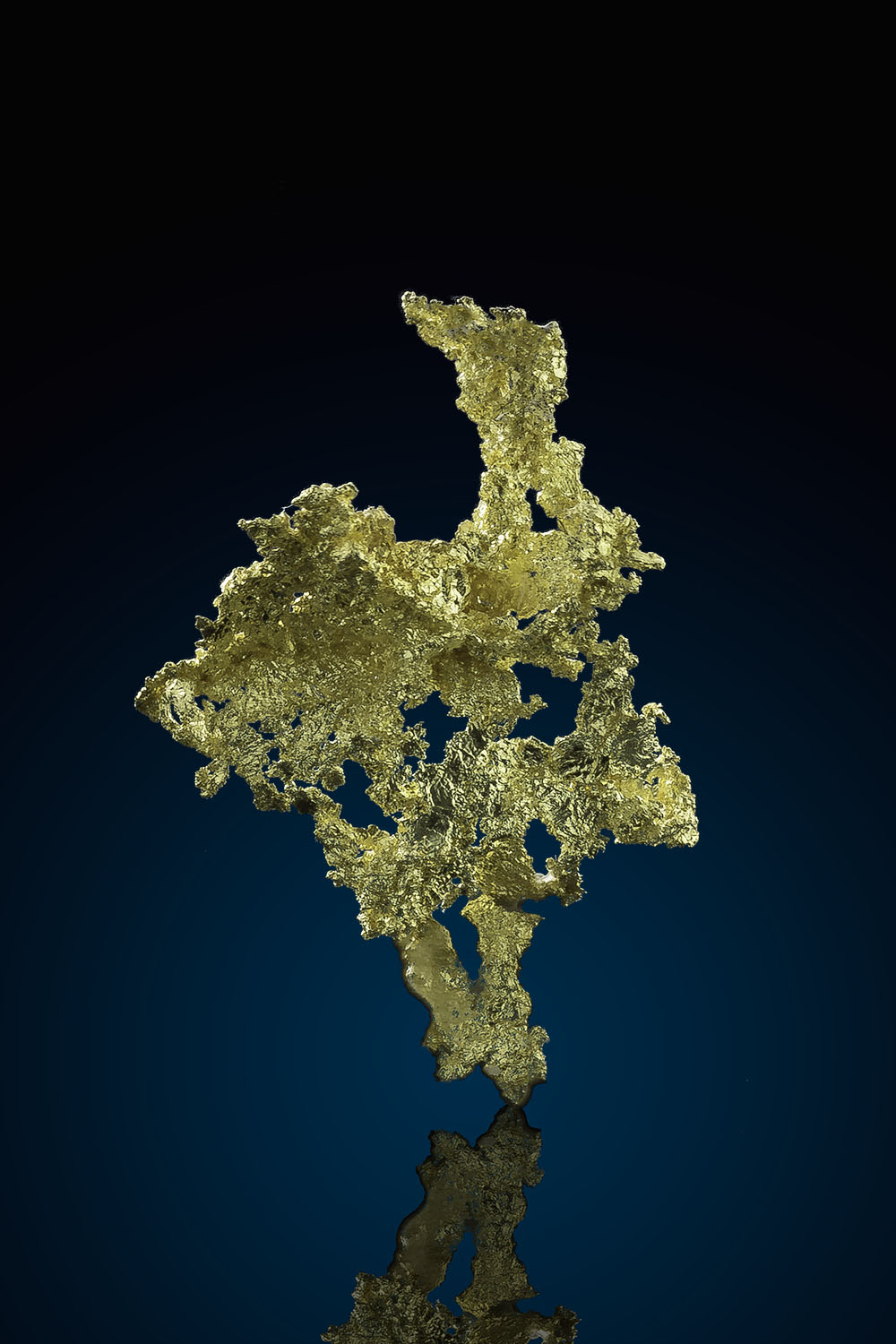 Lacy Crystalline Gold - Allegheny Mining District, California