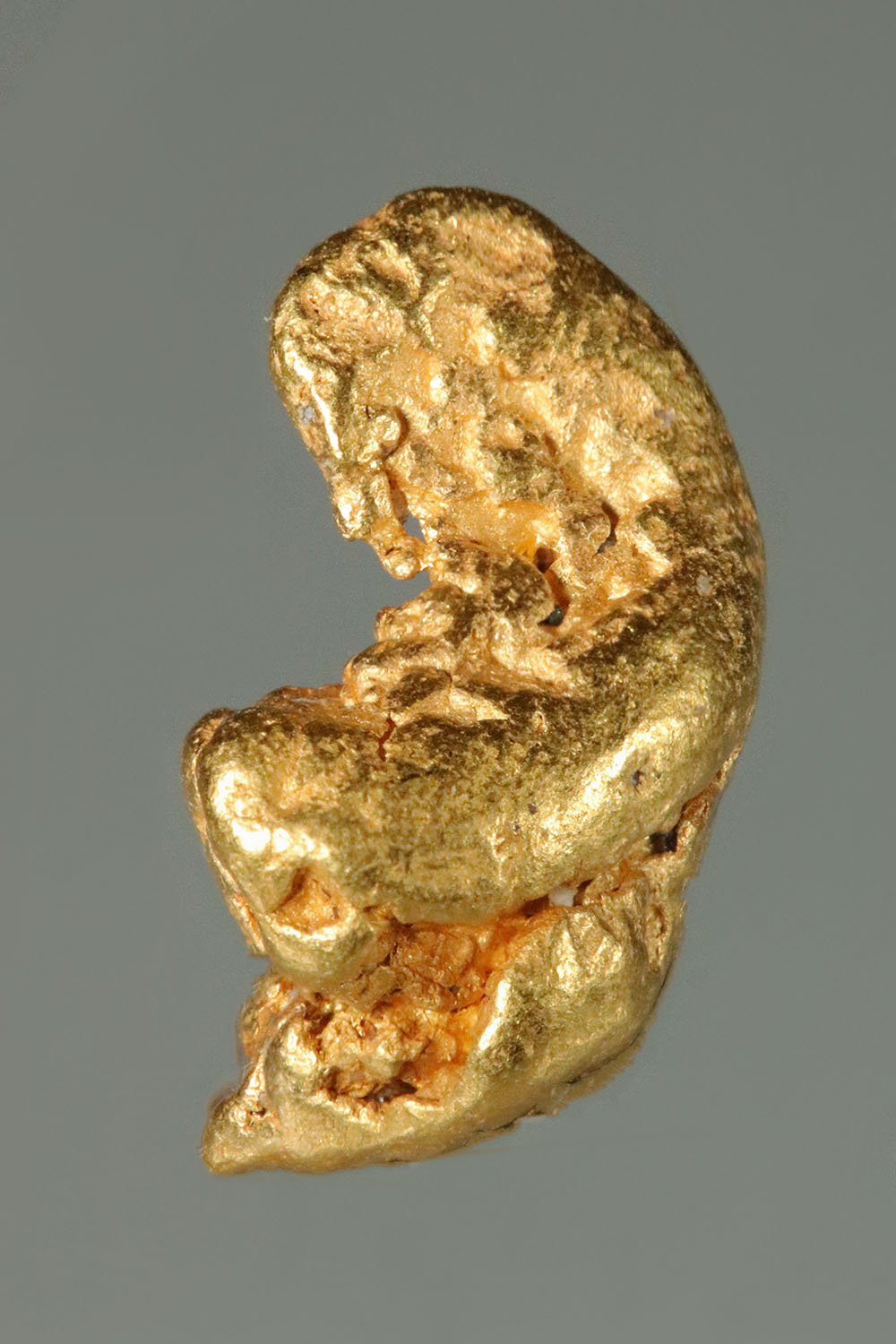 Clever Shape on this California Gold Nugget