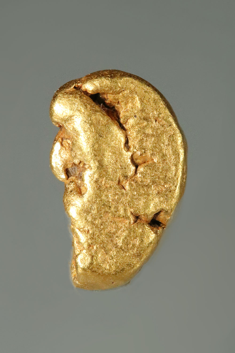 Jewelry/Investment Grade California Gold Nugget