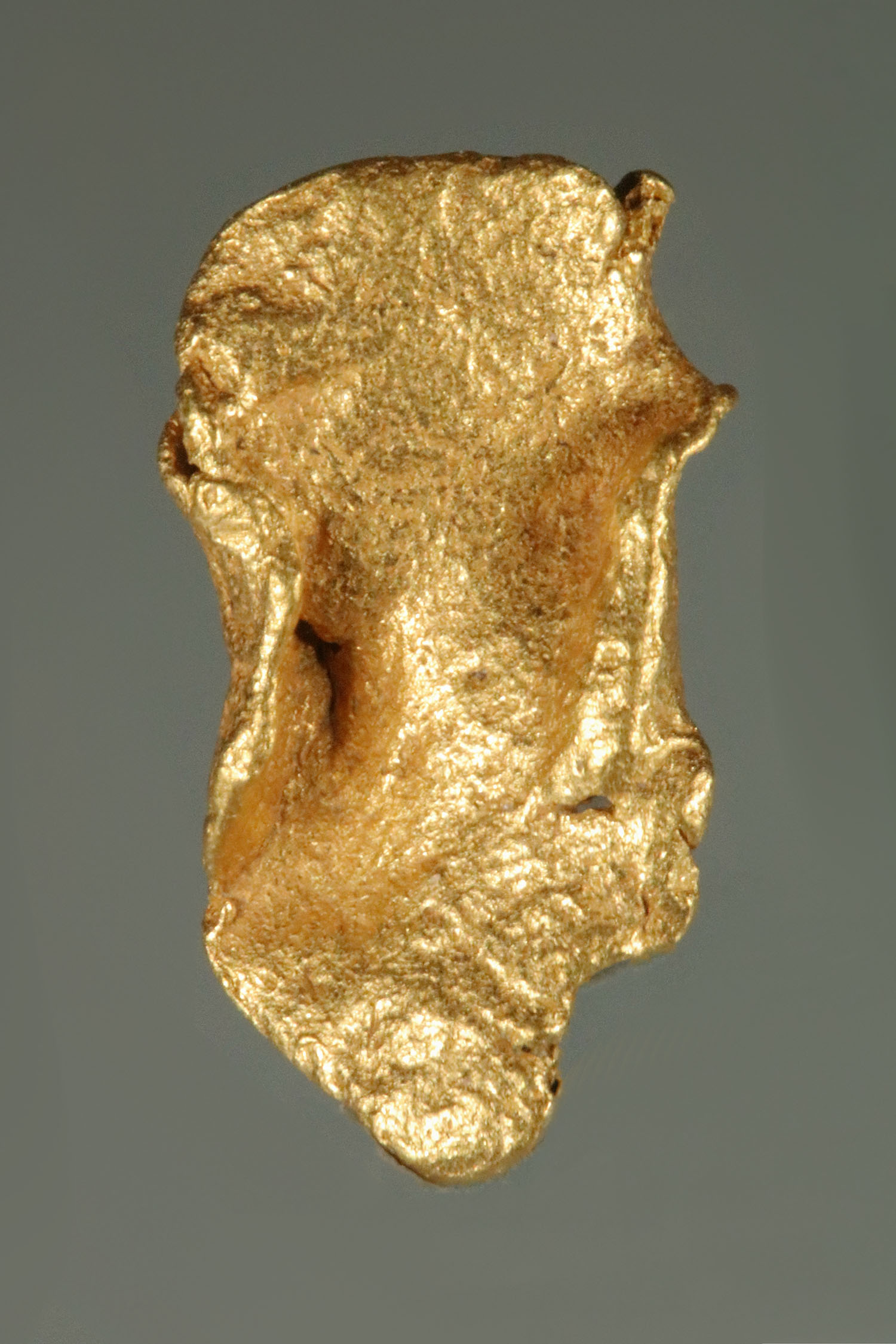 Curved Plate Gold Nugget from Colorado