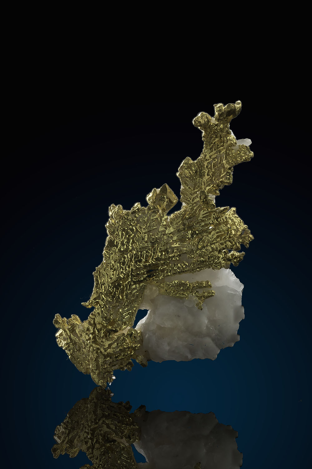 Beautiful Gold crystals in Quartz - Eagles Nest Gold Mine