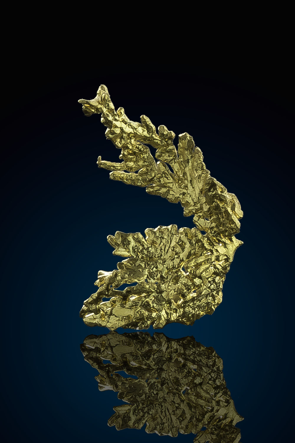 Dendritic Gold Crystal - Eagles Nest Gold mine