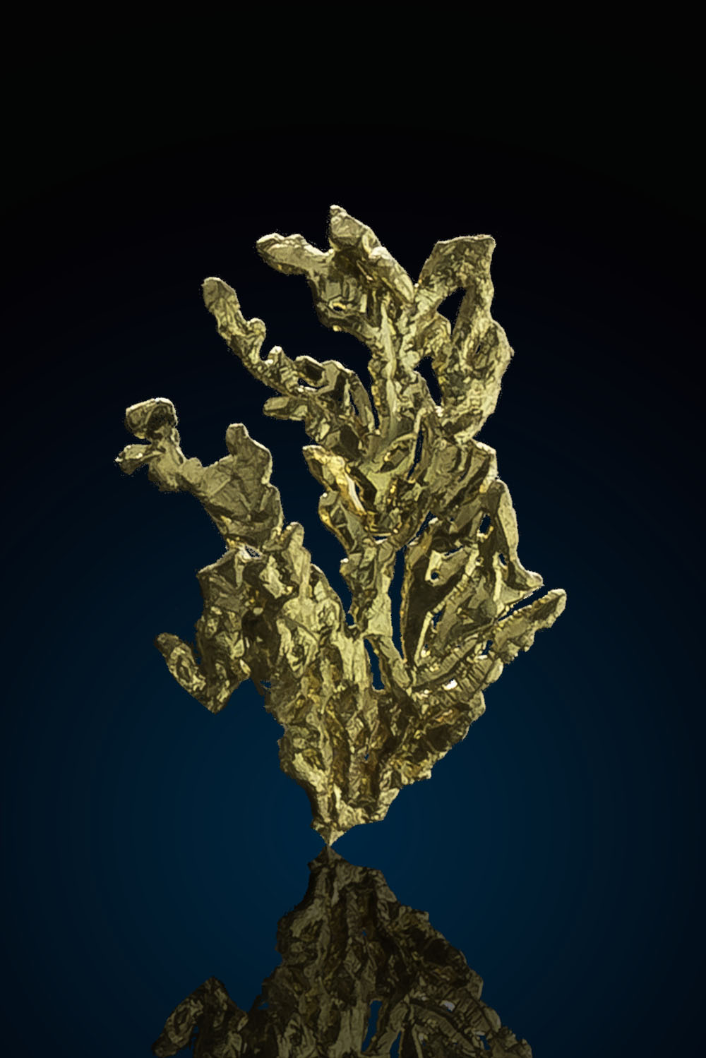Dendritic Wavy Natural Gold Crystal from the Eagles Nest Mine