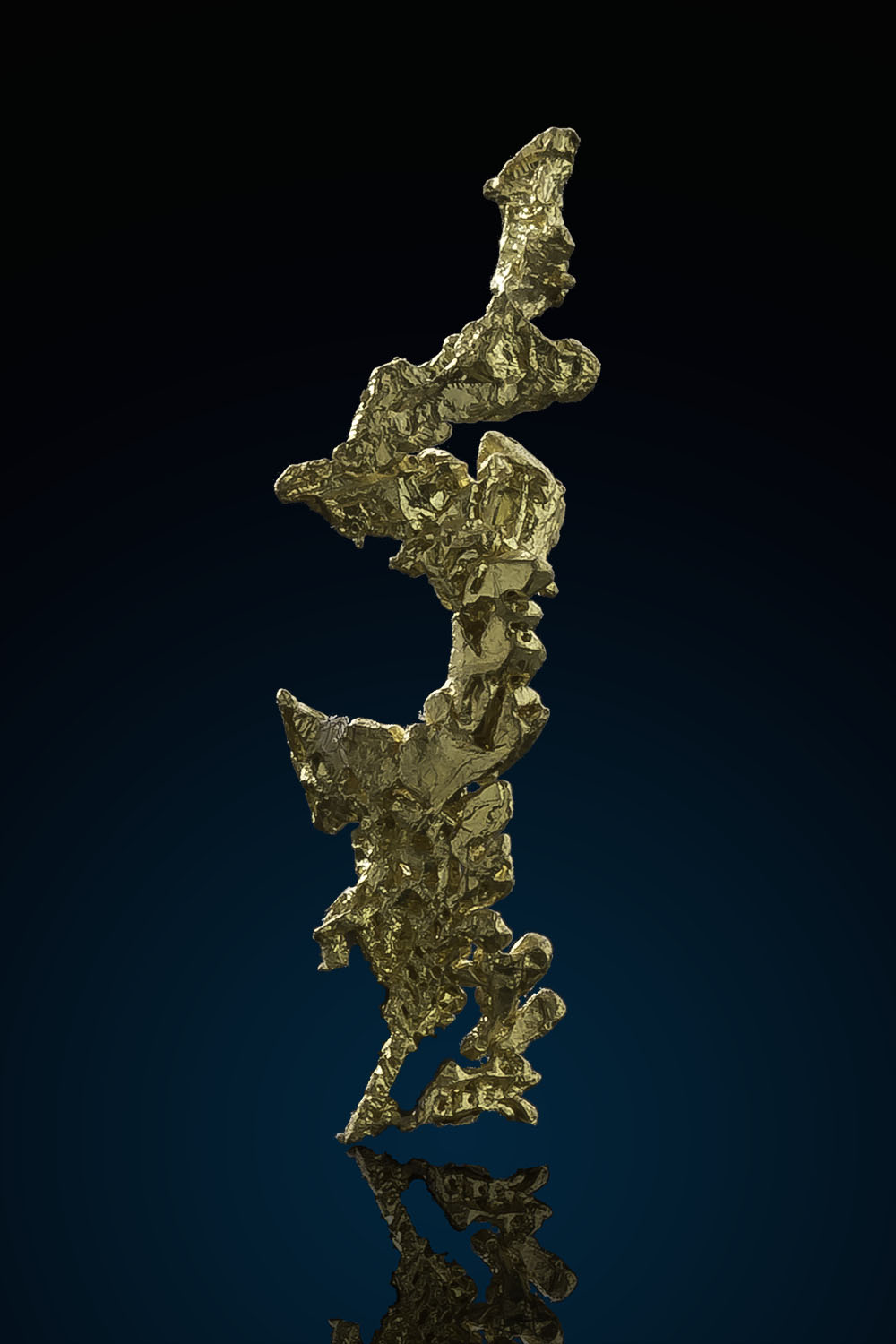 Long and Well Crystalized Gold Specimen - Eagles Nest
