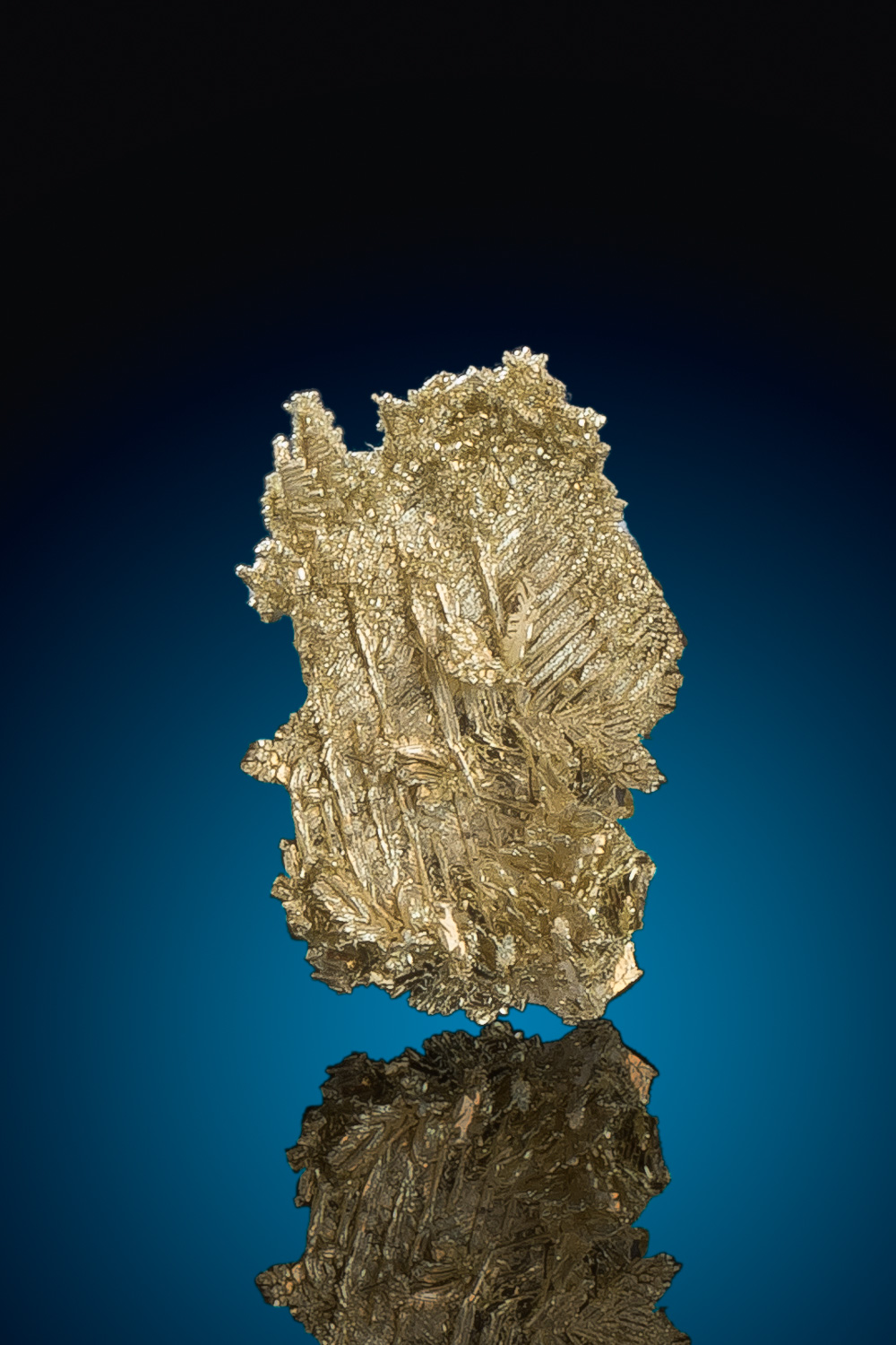 Beautiful Intricate Dendritic Gold Nugget Crystal - Nevada