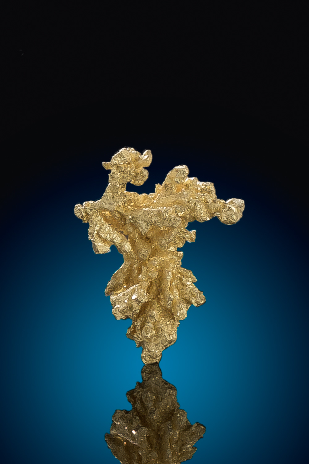 Intricate Gold Nugget Crystal - Round Mountain Gold Mine
