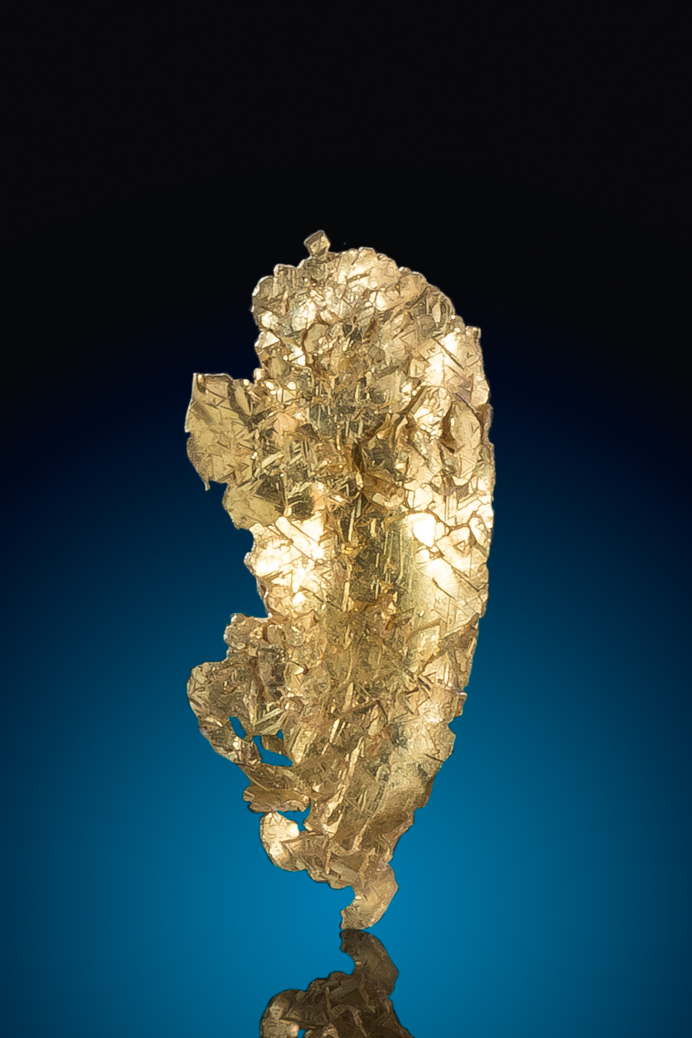 Brilliant Crystalized Leaf Gold Specimen - Round Mountain