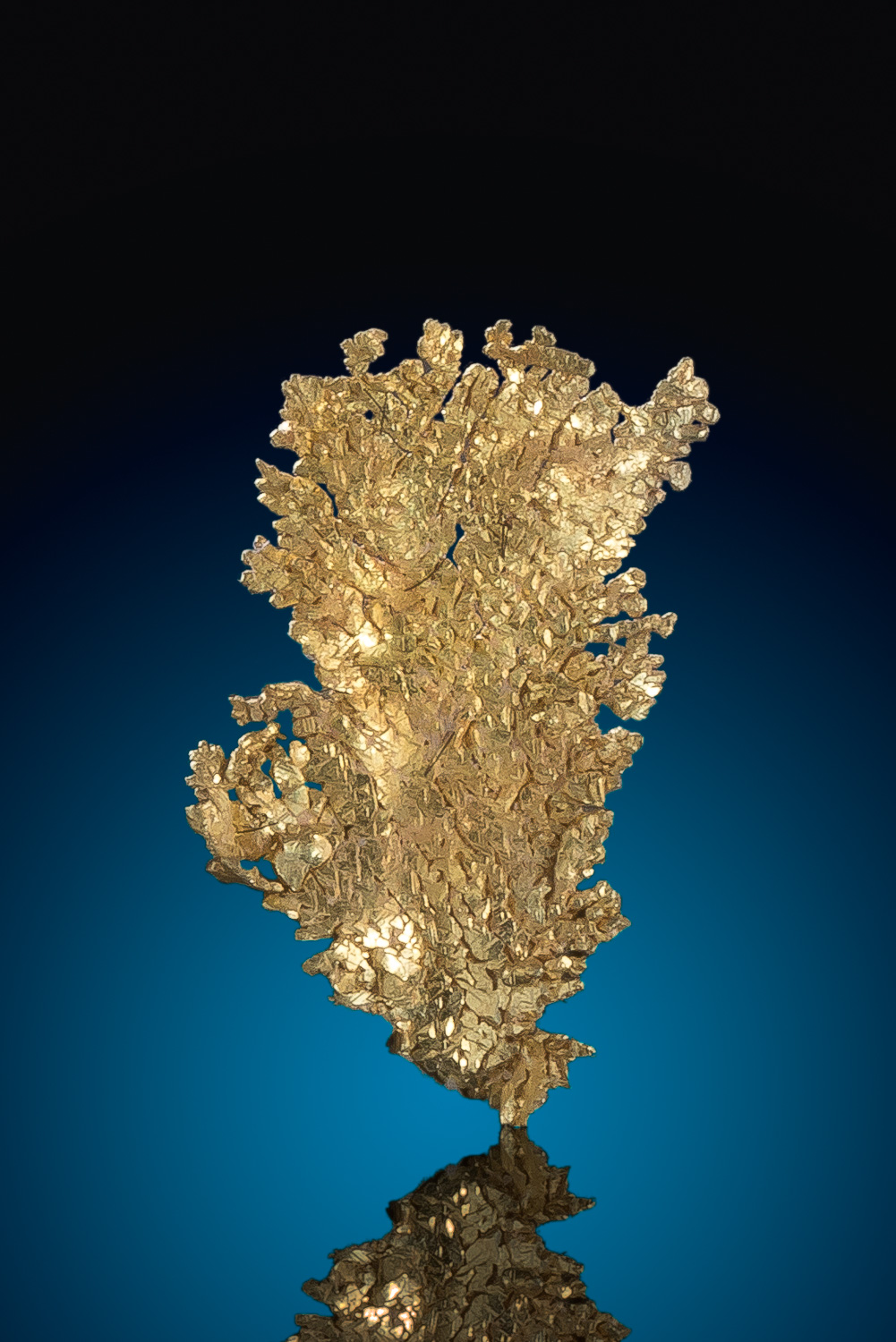 Intricate Leaf Gold Specimen - Well Crystalized - Nevada