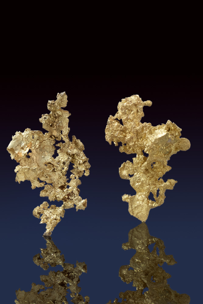 Two Brilliant Crystalline Gold Specimens from the Allegheny