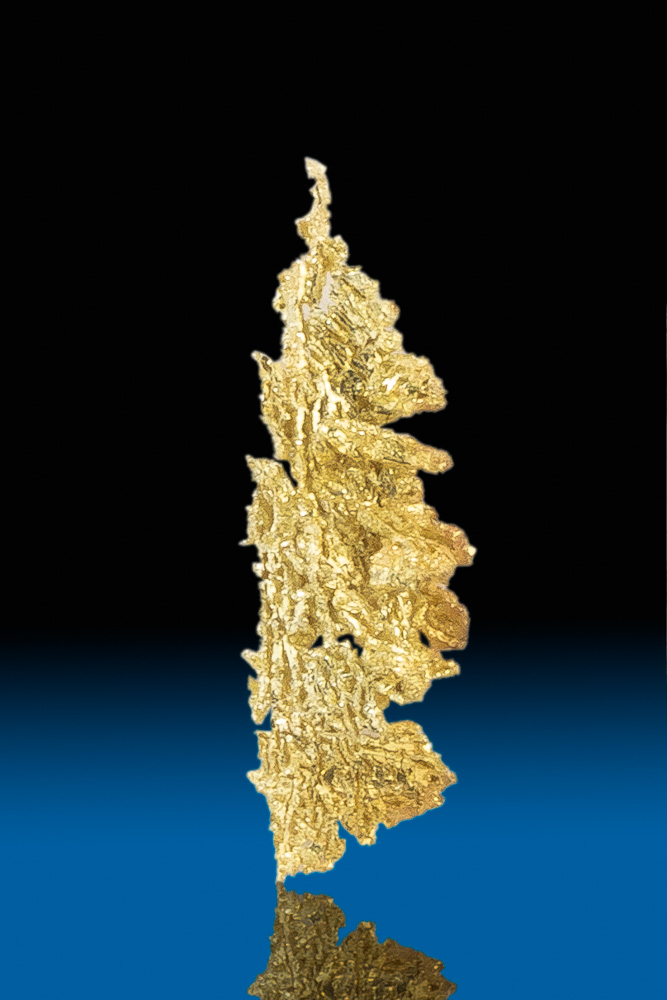 Feather Shaped Natural Gold Crystal from Nevada