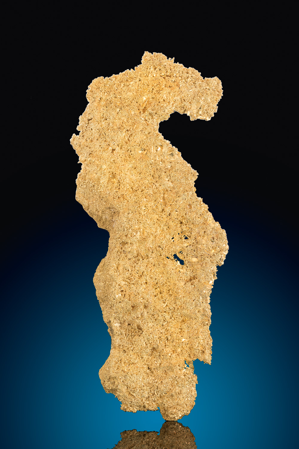 """The Sea Horse"" Large Gold Crystal Specimen - Round Mountain"