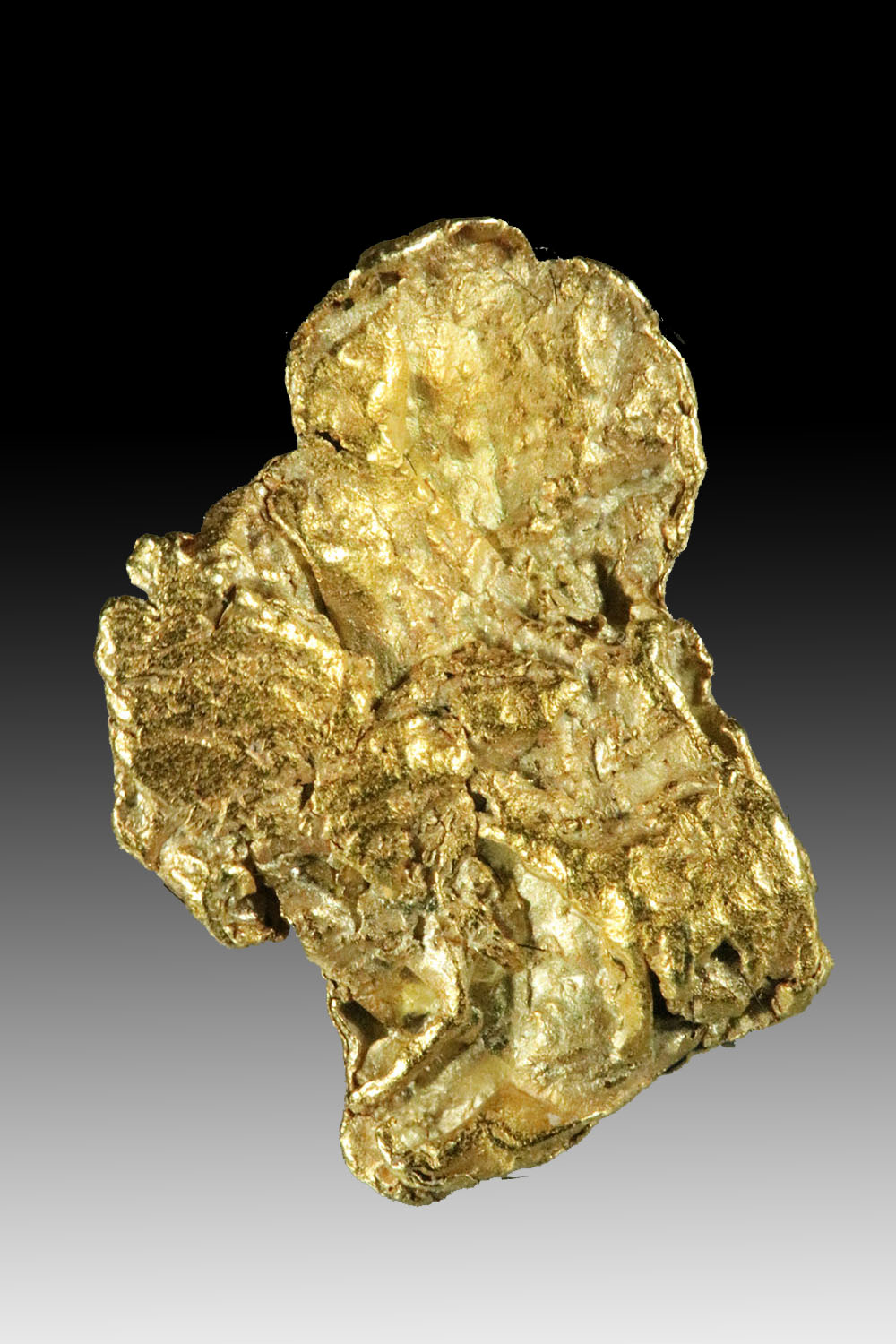 Denali National Park, Alaska - Flat Textured Gold Nugget
