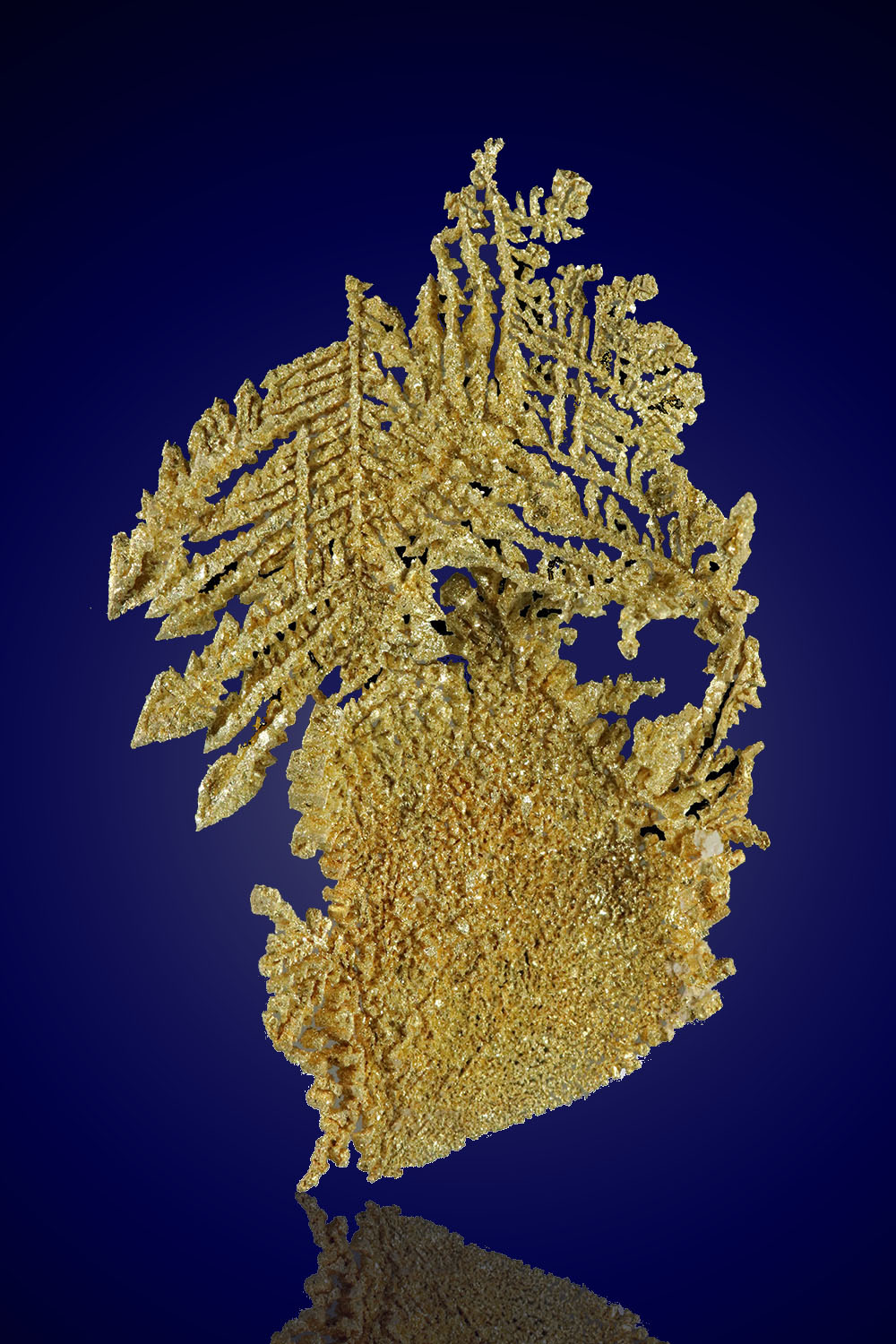 Beautiful Dendritic Gold Specimen - Nevada
