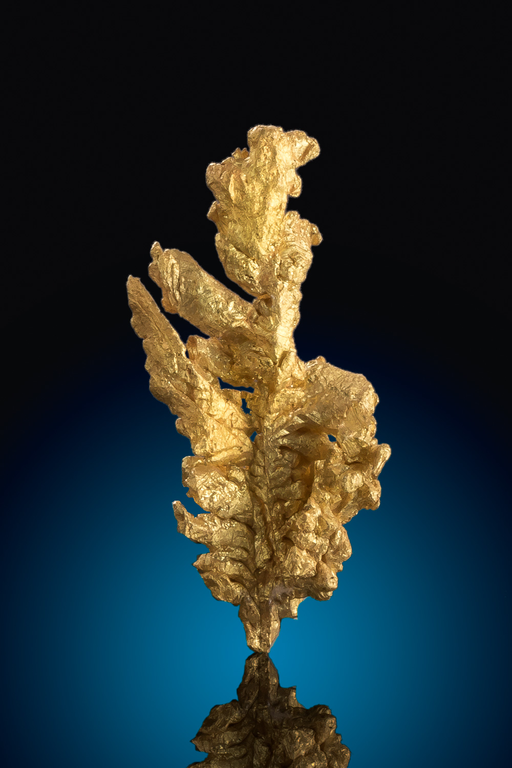 Long and Faceted Gold Crystal - Mariposa County, California