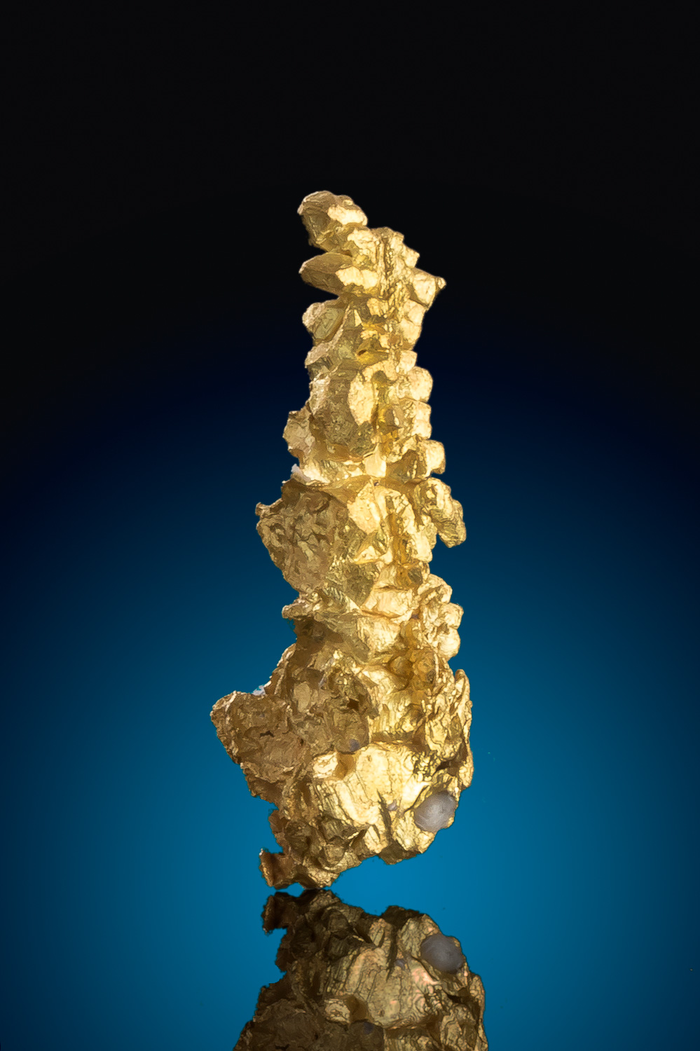 Long and Tapered Gold Crystal - Mariposa County, California