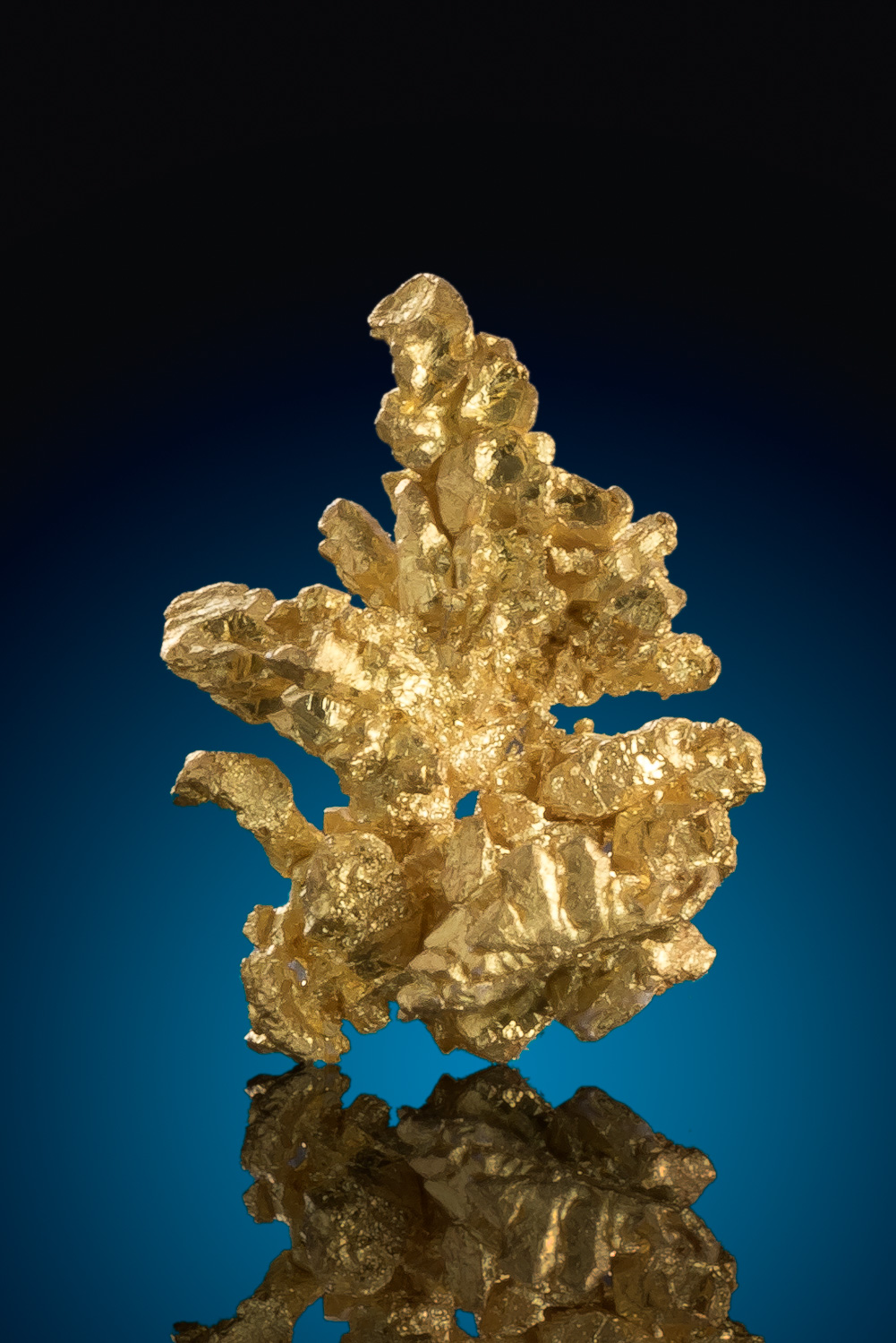 Dendritic Chunky Gold Crystal - Mariposa County, California