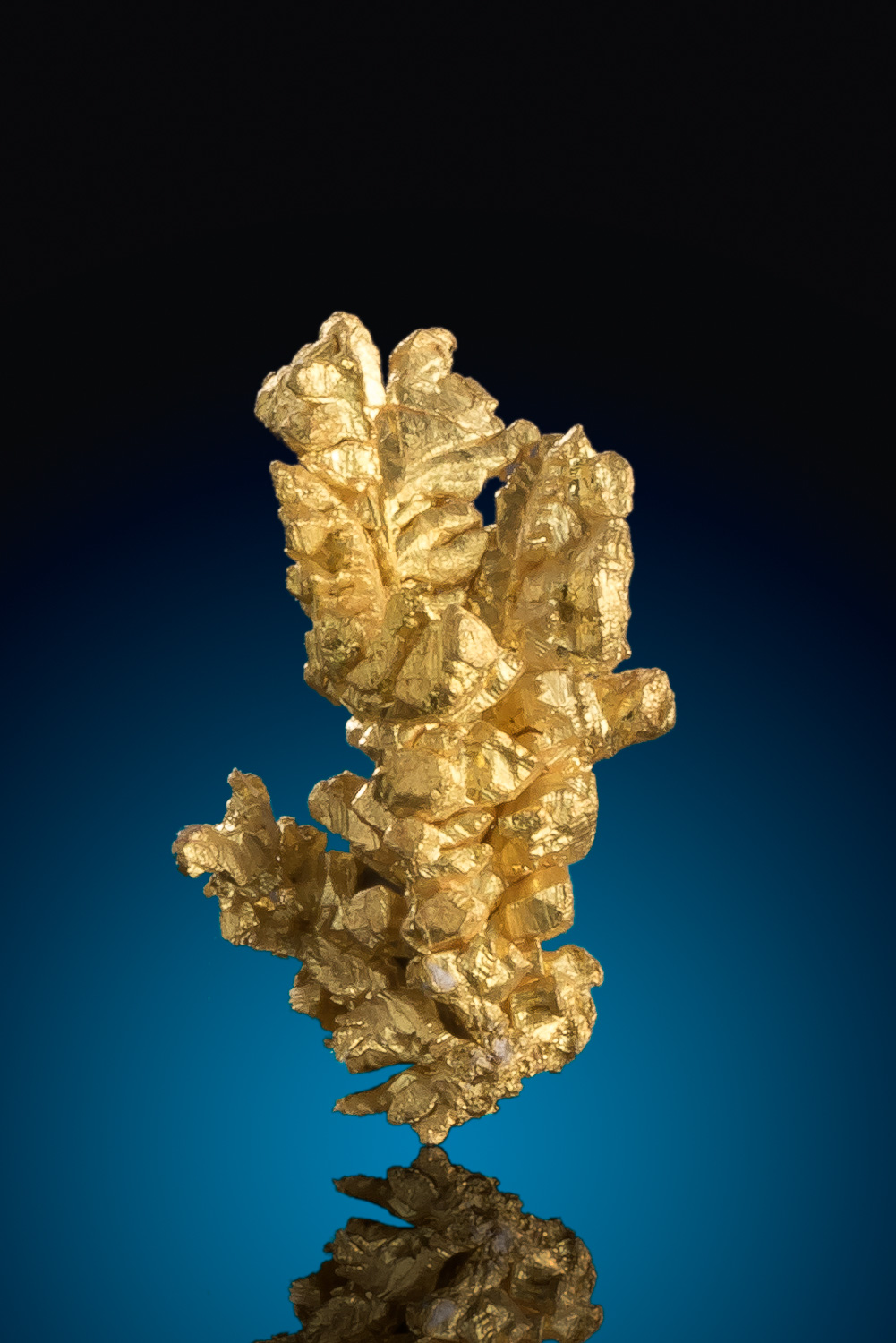 Sharp Faceted Gold Crystal Cluster - Diltz Gold Mine, Mariposa