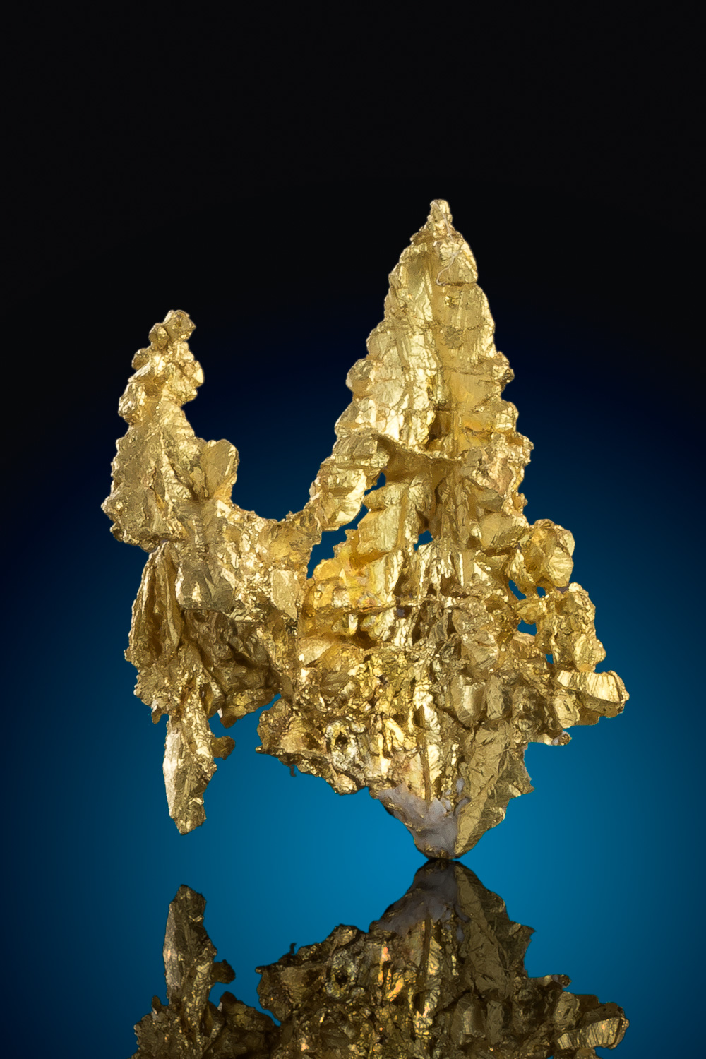 Brilliant and Unique - Gold Crystal from the Diltz Mine