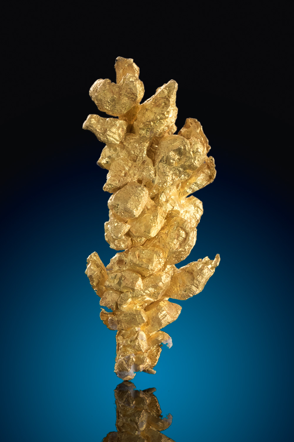 A tower of crystalized gold gold crystal from California