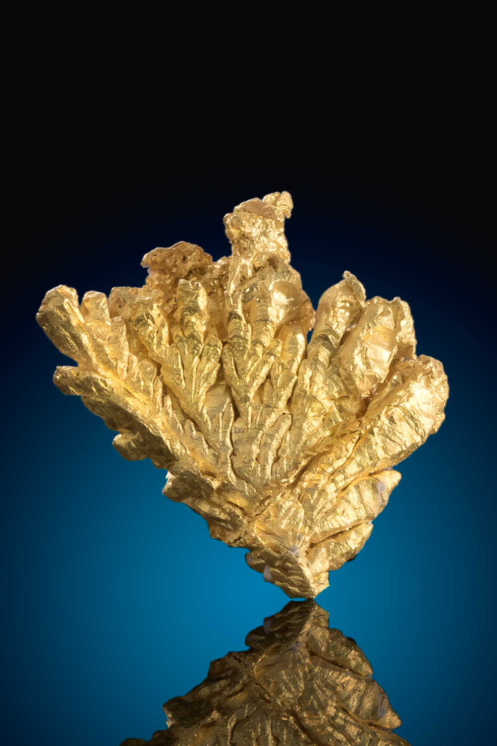 Magnificent Dendritic Gold Nugget Specimen - Diltz Gold Mine