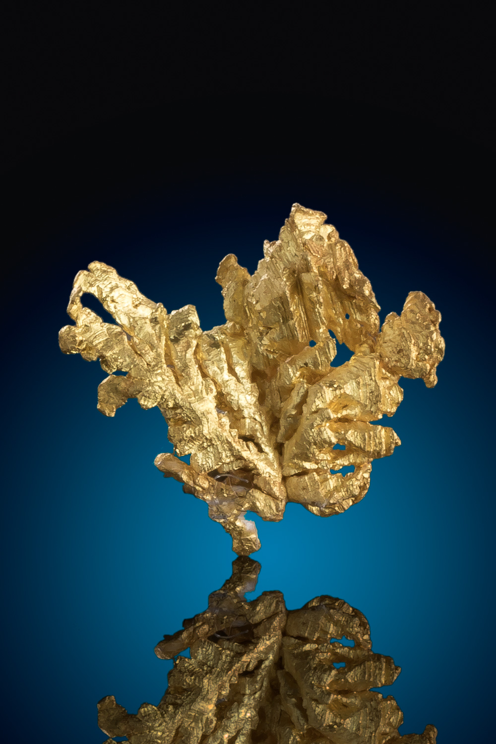 Brilliant and Sharp Gold Crystal - Mariposa County