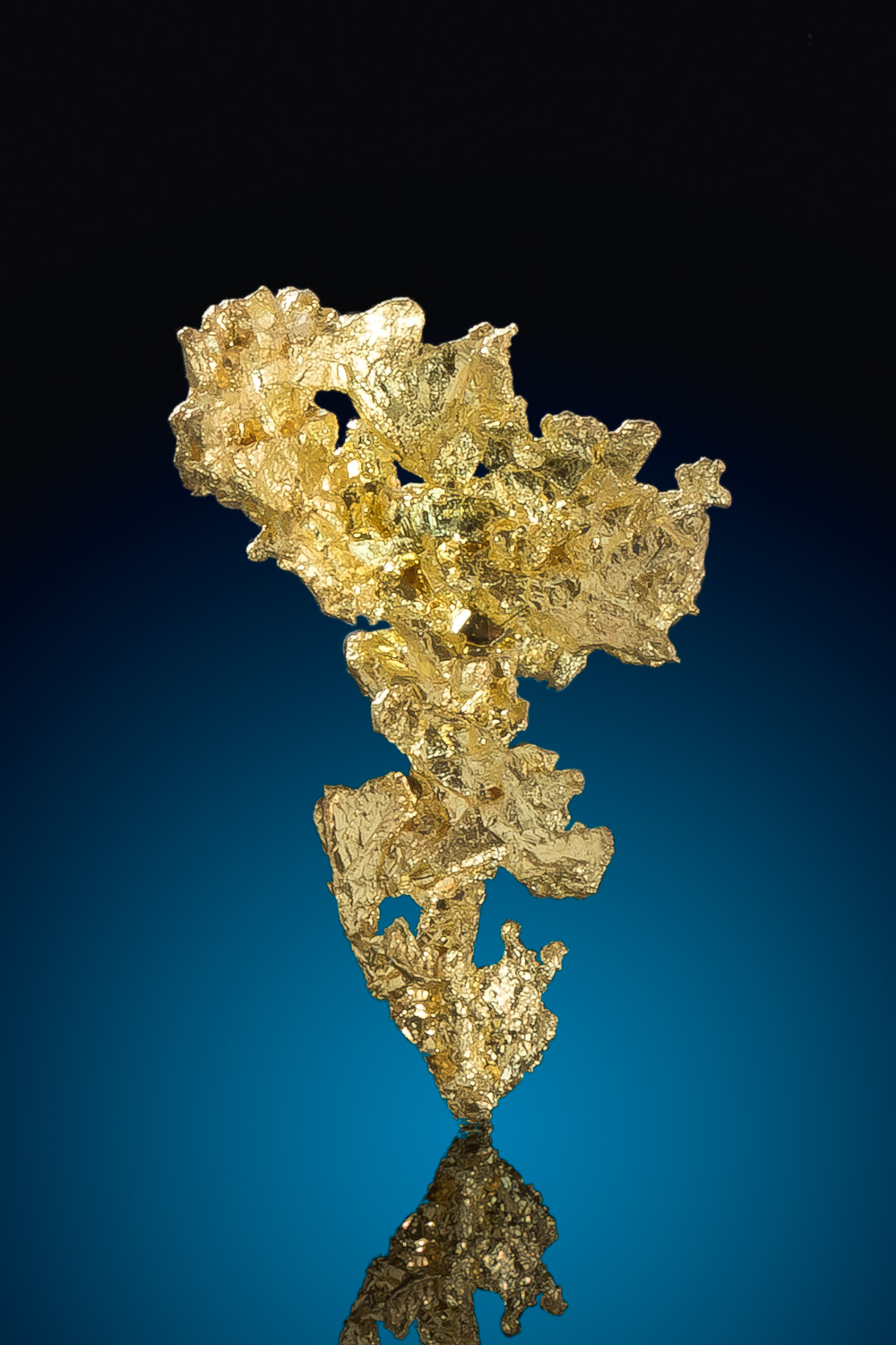 Lacy and Brilliant - Crystalline Gold from Eagles Nest