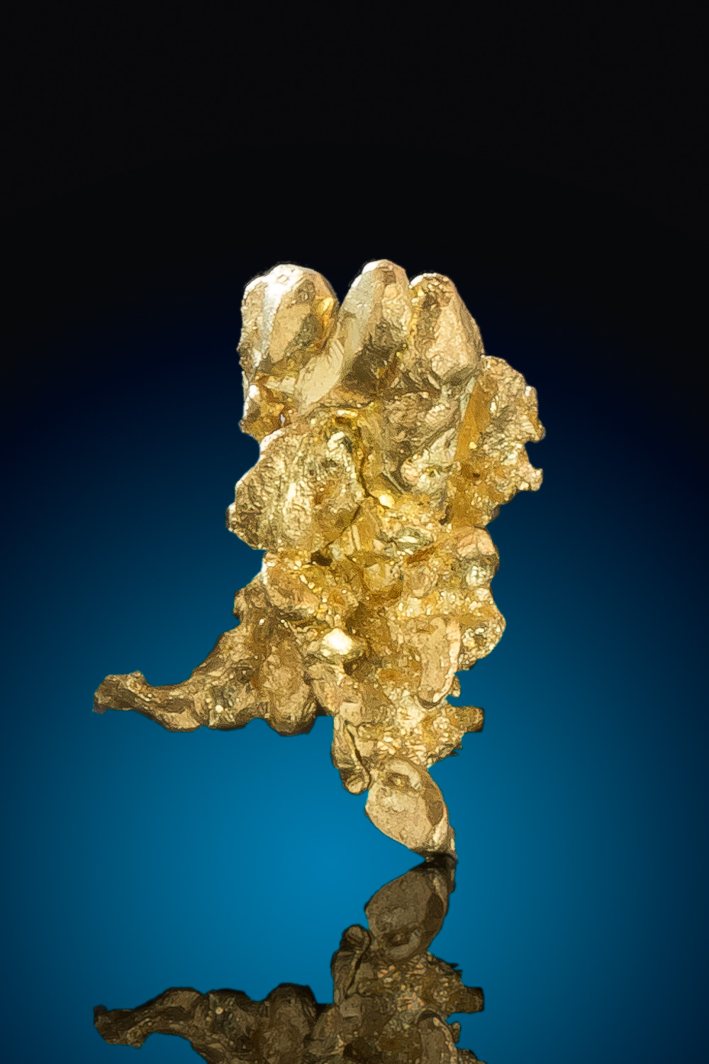 Intricate Natural Crystalline Gold Nugget - Eagles Nest