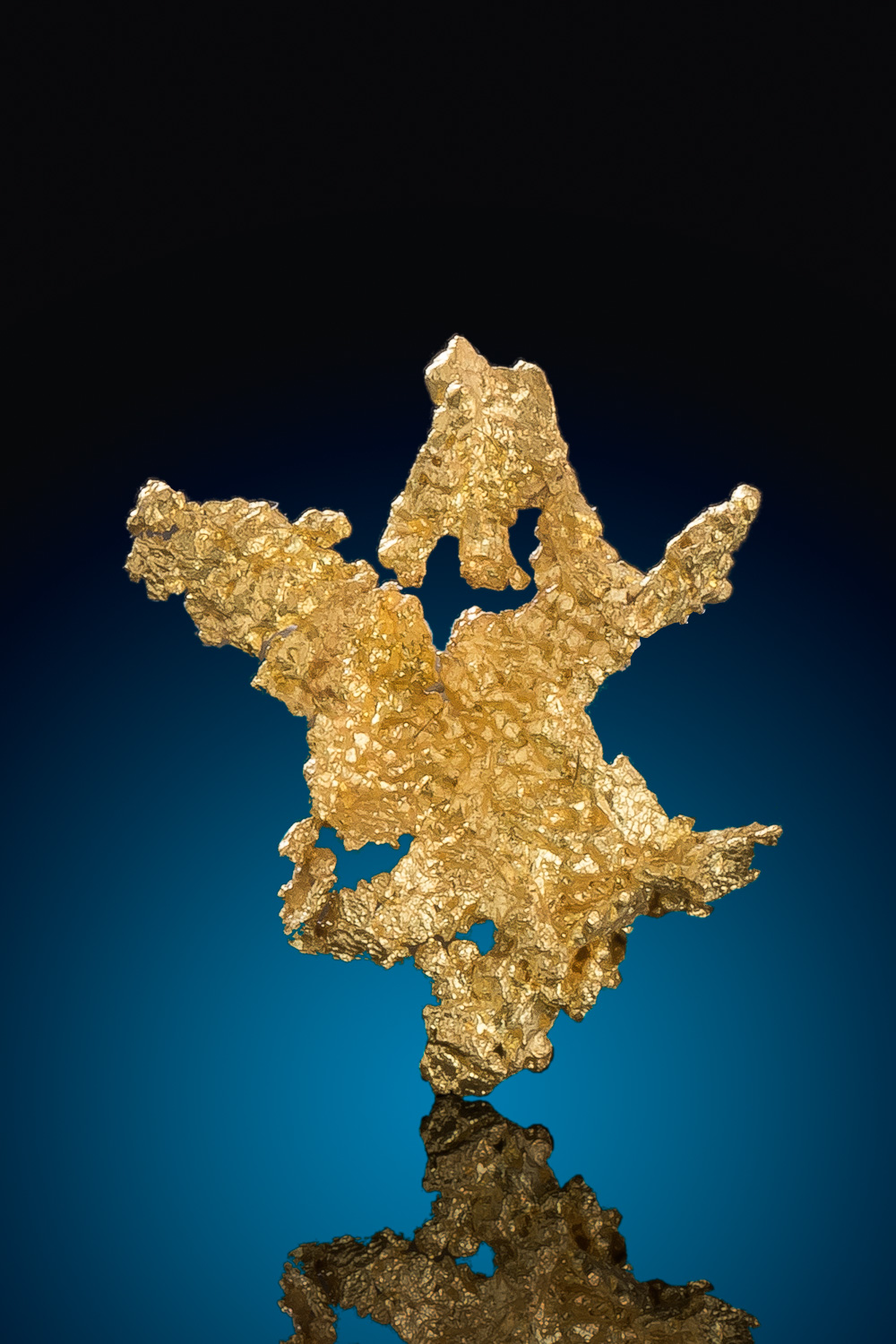 Branching Crystalline Gold Nugget - Eagles Nest Gold Mine