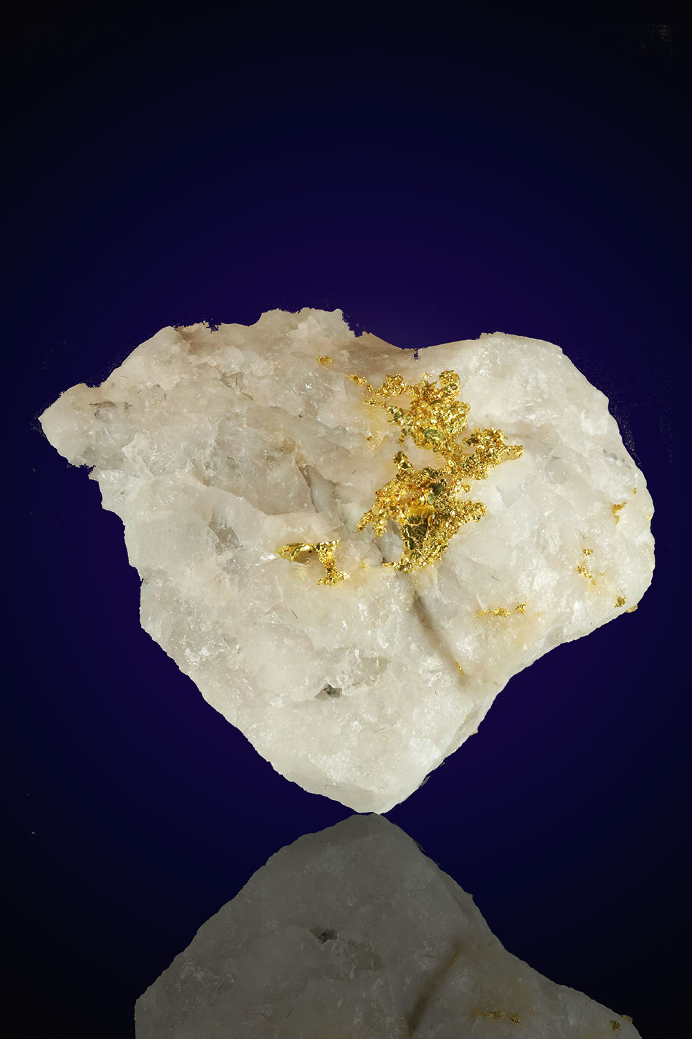 Eagles nest Gold in Quartz Gold Specimen