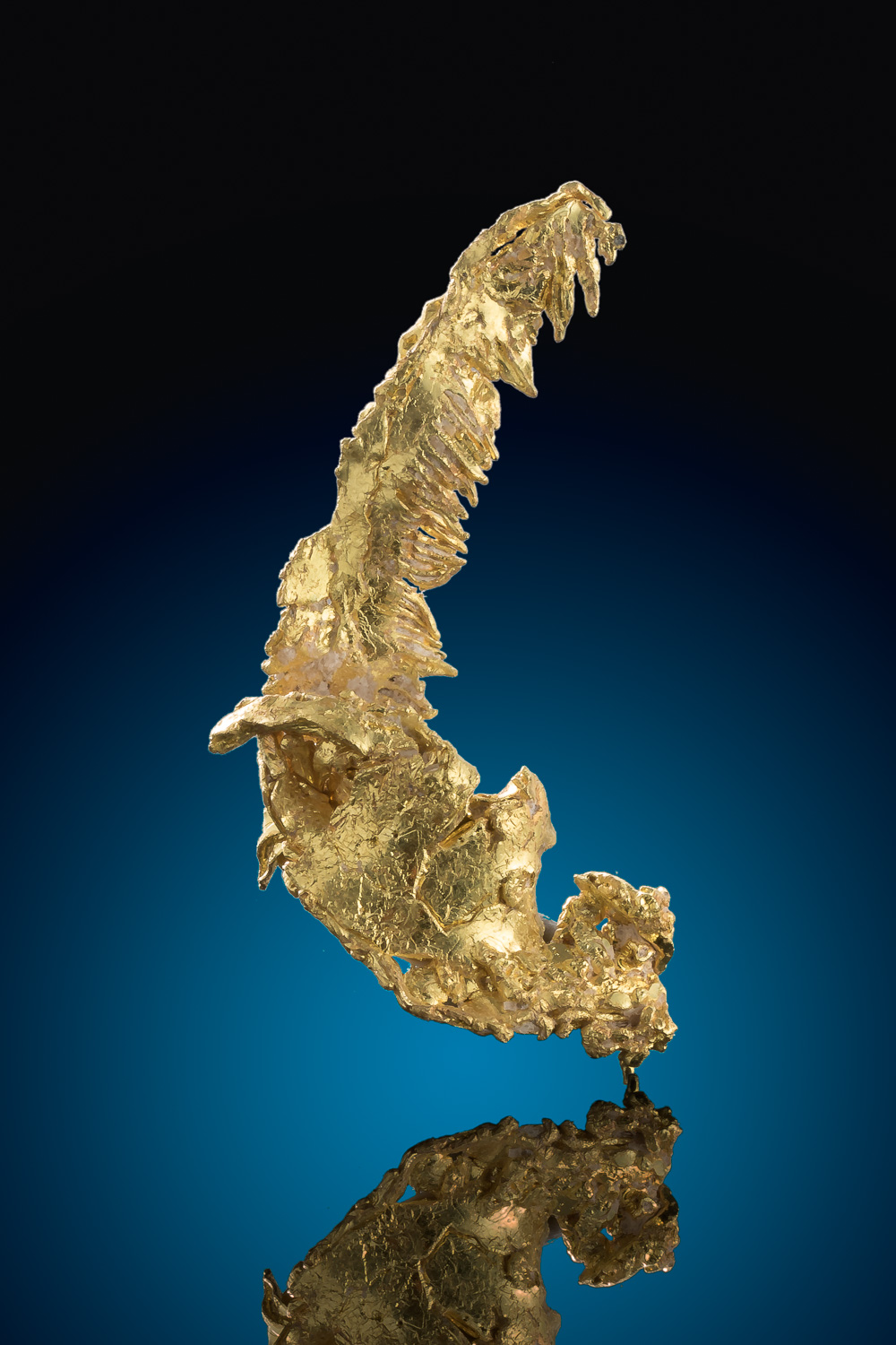 """The Feather"" Gold Nugget Specimen from Eagles Nest Gold Mine"