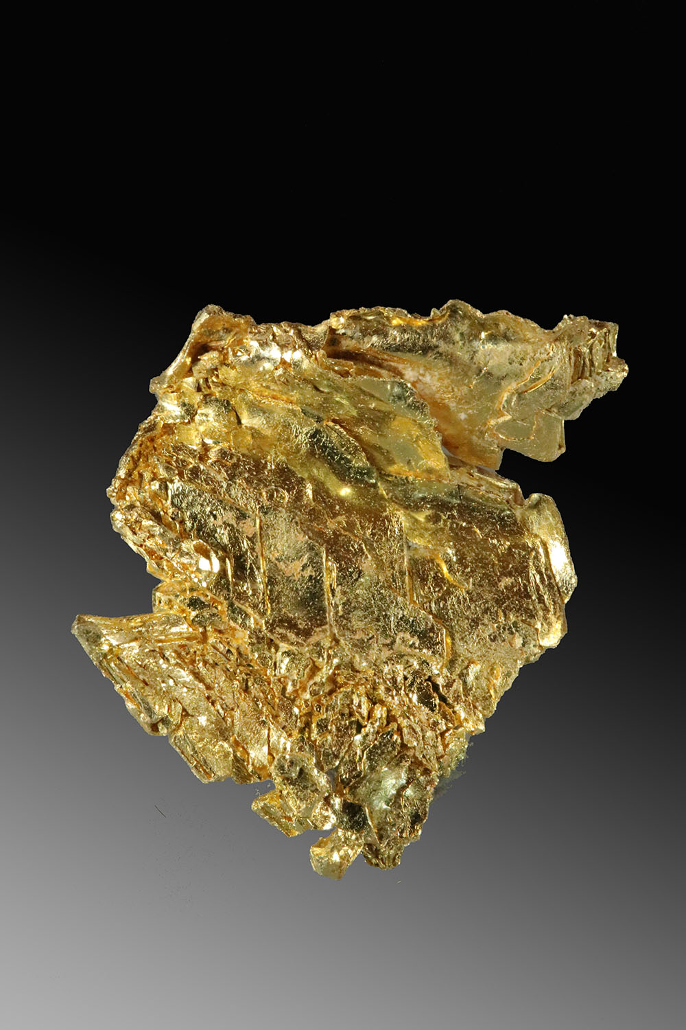 Wavy Leaf Gold - Buttery Yellow Gold Crystal Specimen