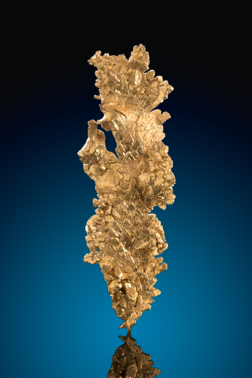 Beautiful Crystalized Leaf Gold Nugget Specimen - Round Mountain