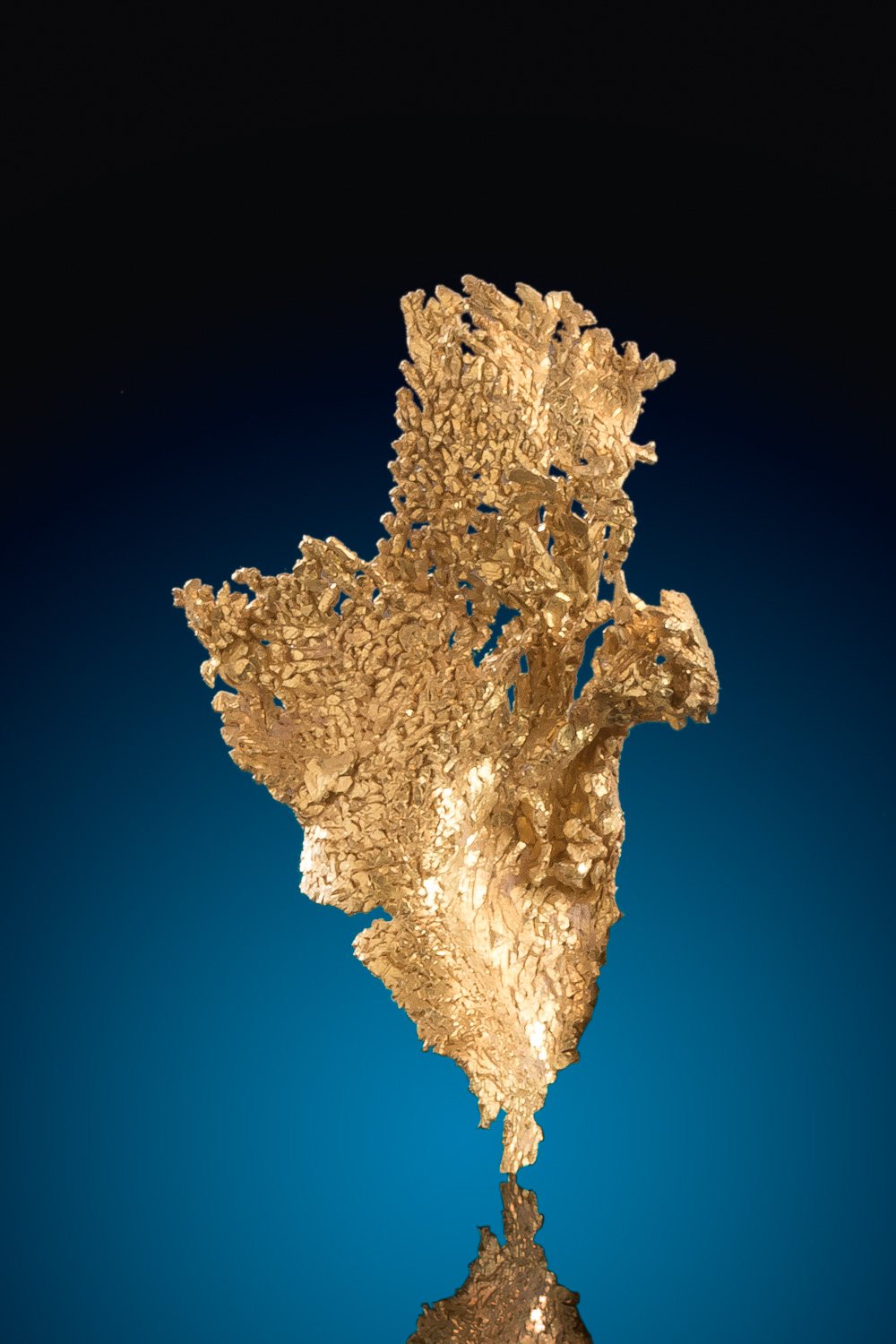 Beautiful Leaf Gold Nugget Specimen - Round Mountain
