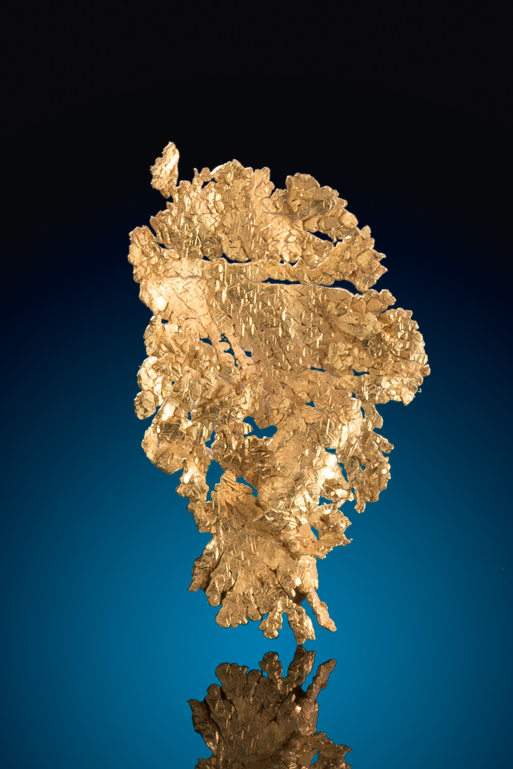 Beautiful Leaf Gold Nugget - Trigon Surface - Round Mountain