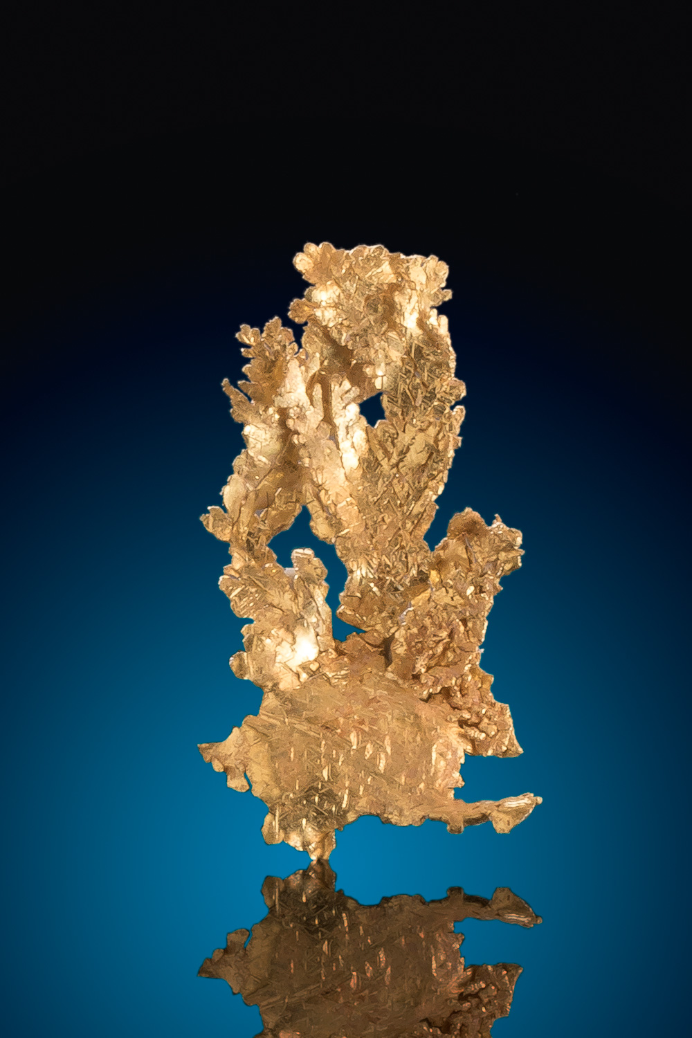 Dendritic and Intricate Gold Nugget Leaf Gold Specimen