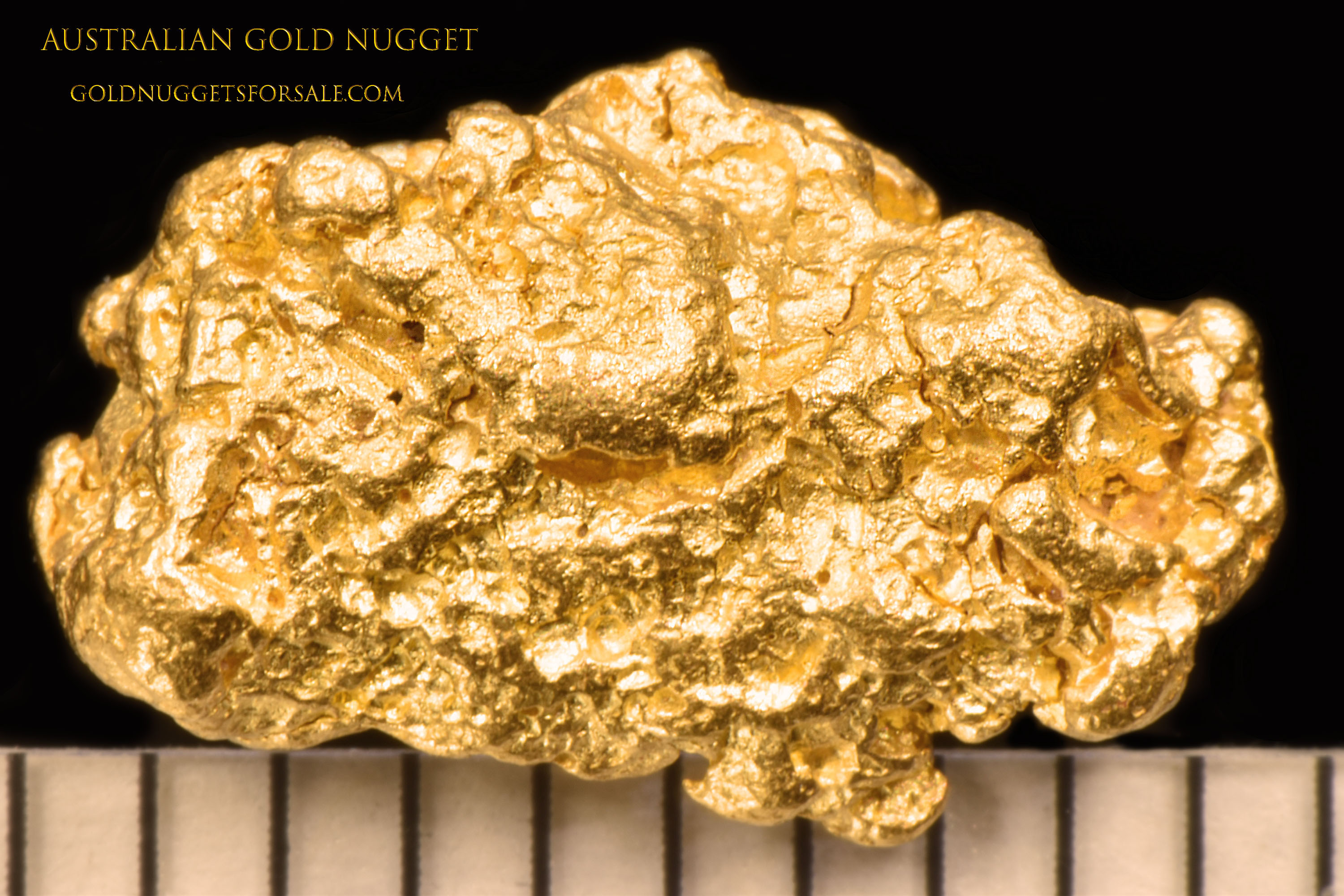 Detailed and Exquisite - Australian Gold Nugget