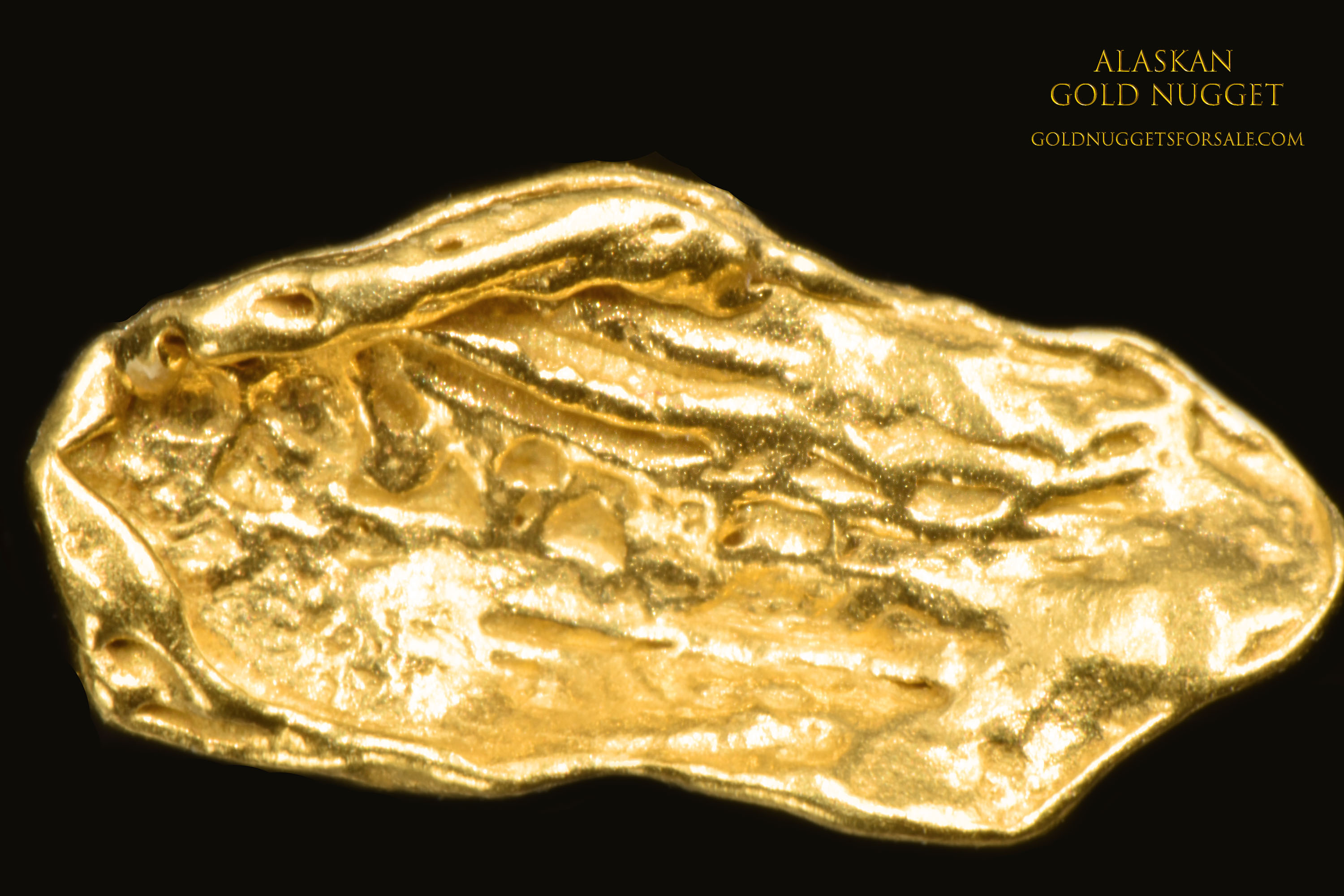 Thin and Shiny Jewelry Grade Alaskan Gold Nugget