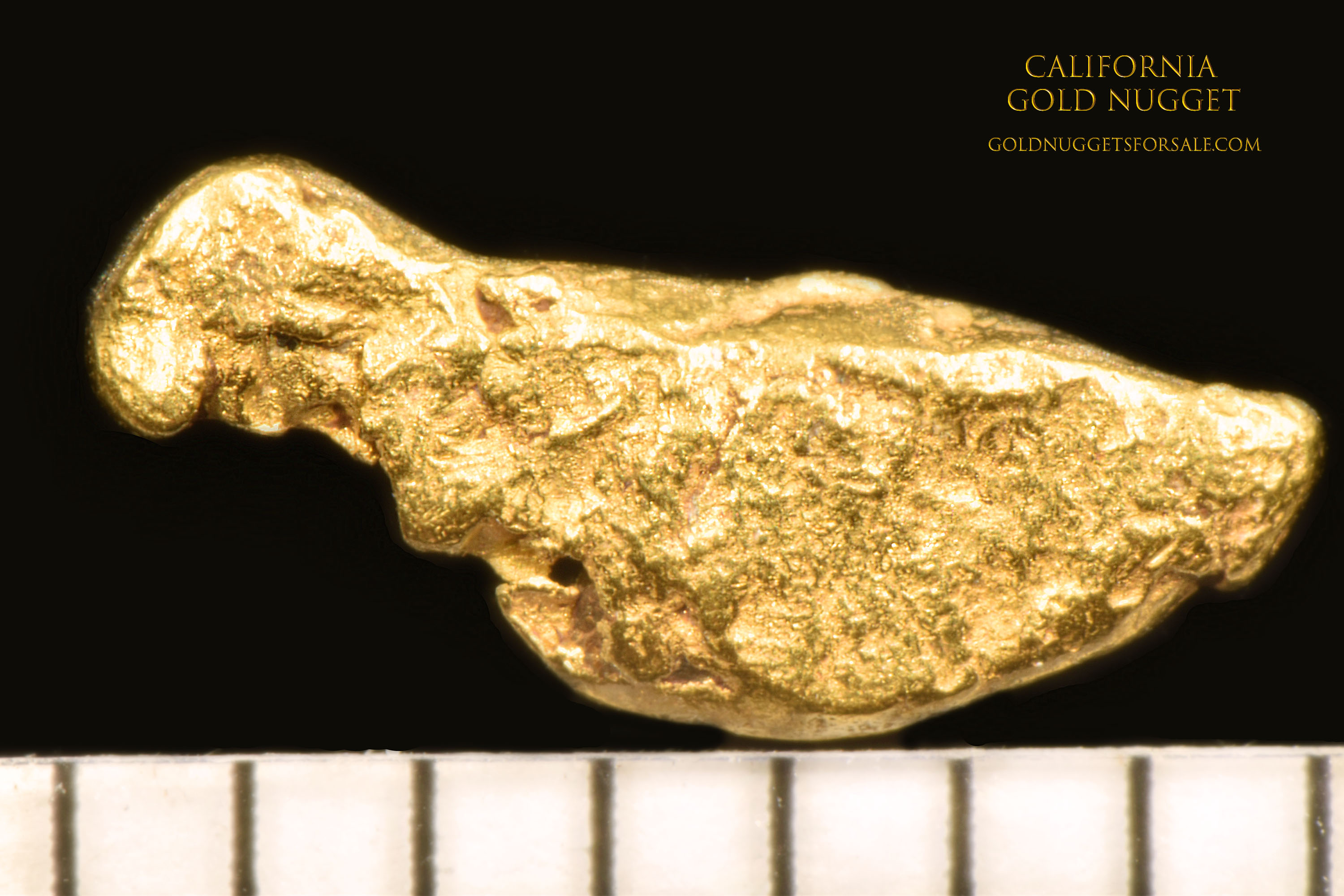 Interesting Bird Shaped California Gold Nugget