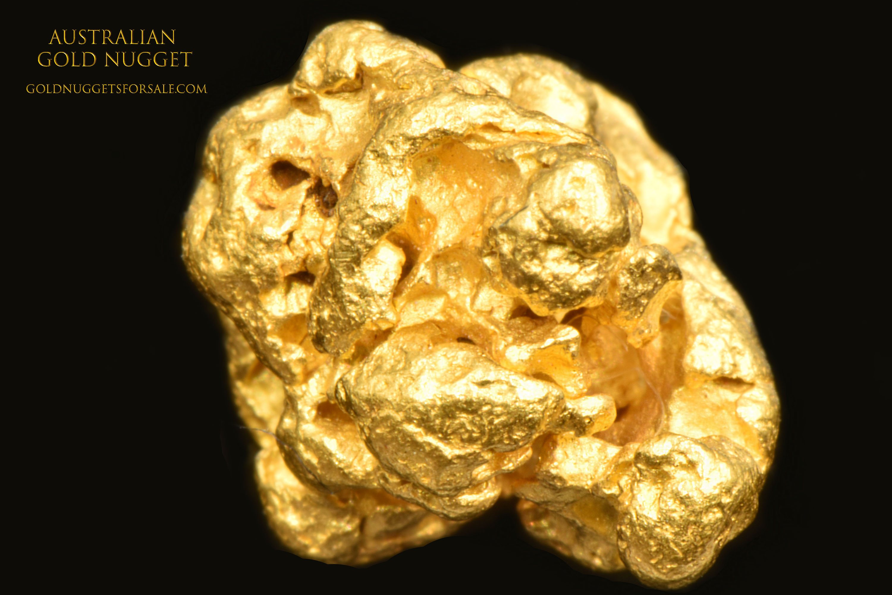 Extra Plump and Very Detailed - Australian Gold Nugget