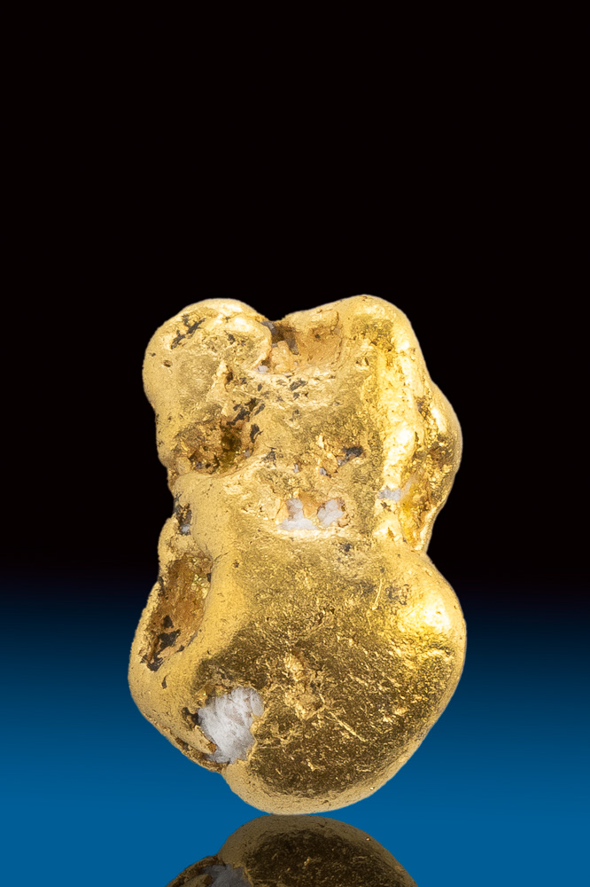 Shiny Natural Gold and Quartz Alaskan Nugget