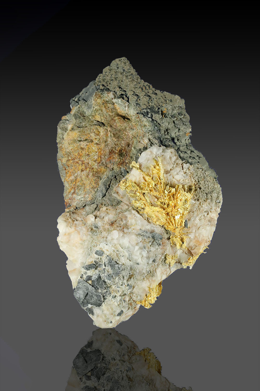 Willow Creek, Nevada - Gold Specimen with Crystals on Quartz